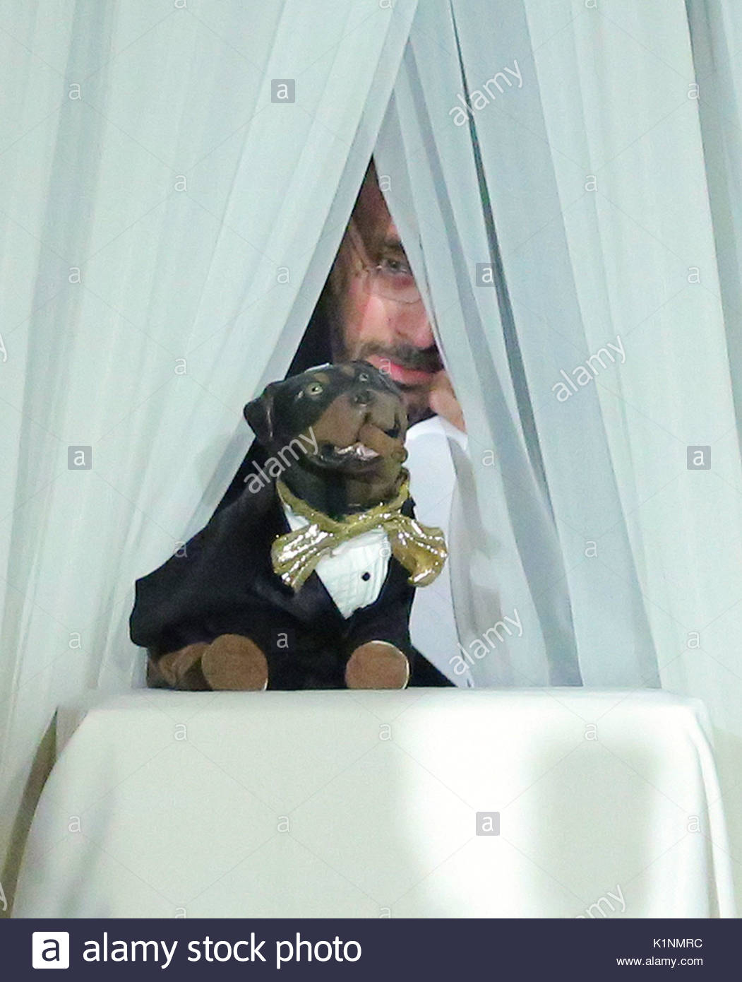 Magnificent Dog Tuxedos For Weddings Frieze - Wedding Dress Ideas ...