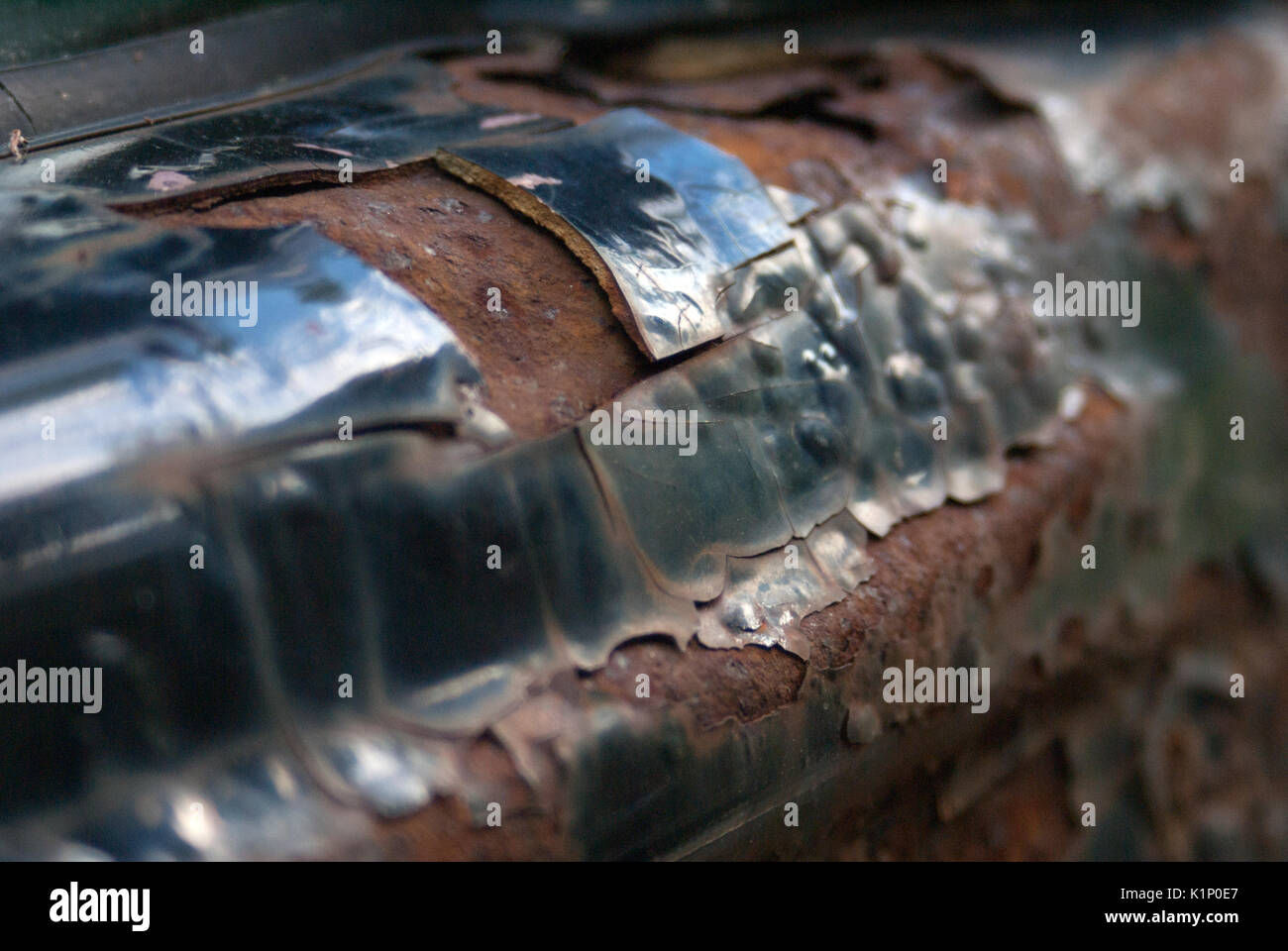 Rust peeling the paint off of a truck - Stock Image