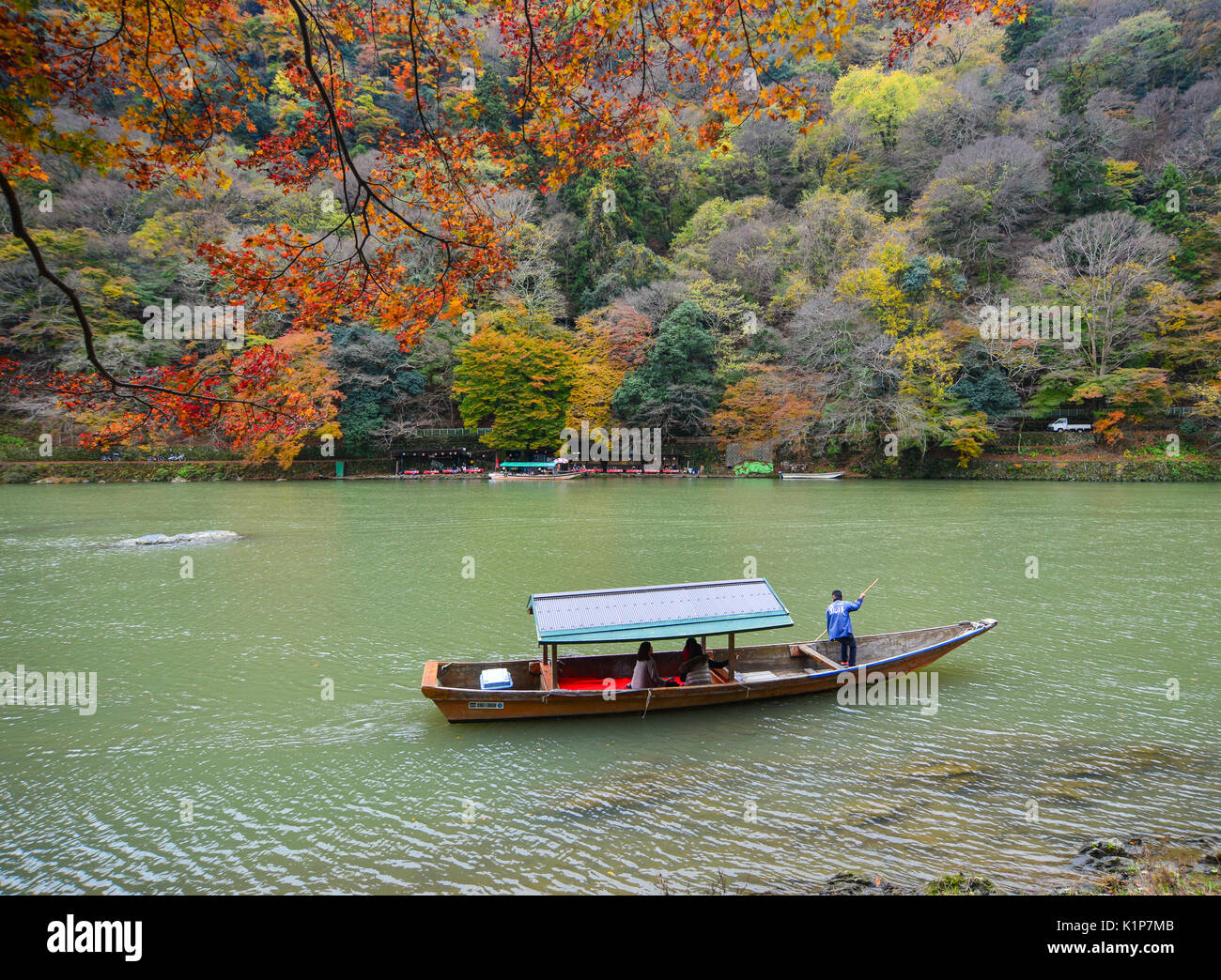 Kyoto, Japan - Nov 28, 2016. Boatman punting the boat for tourists to enjoy the autumn view with maple trees along the bank of Hozu river in Arashiyam - Stock Image