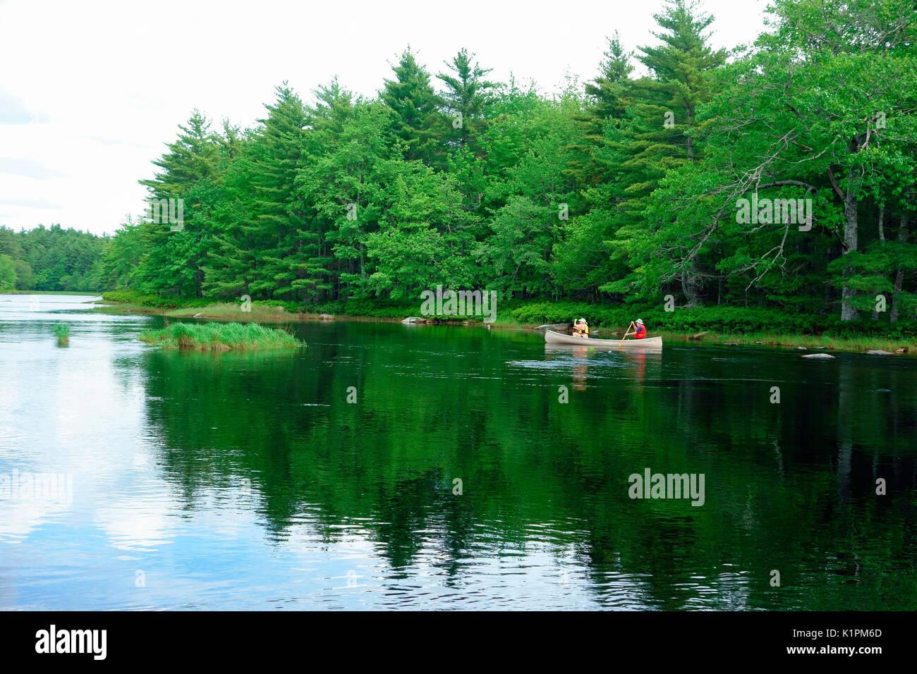 Mersey river, kejimkujik national park, nova scotia, canada - Stock Image