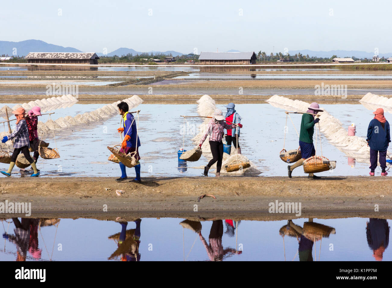 Workers gathering sea salt from the salt pans, Petchaburi province, Thailand - Stock Image