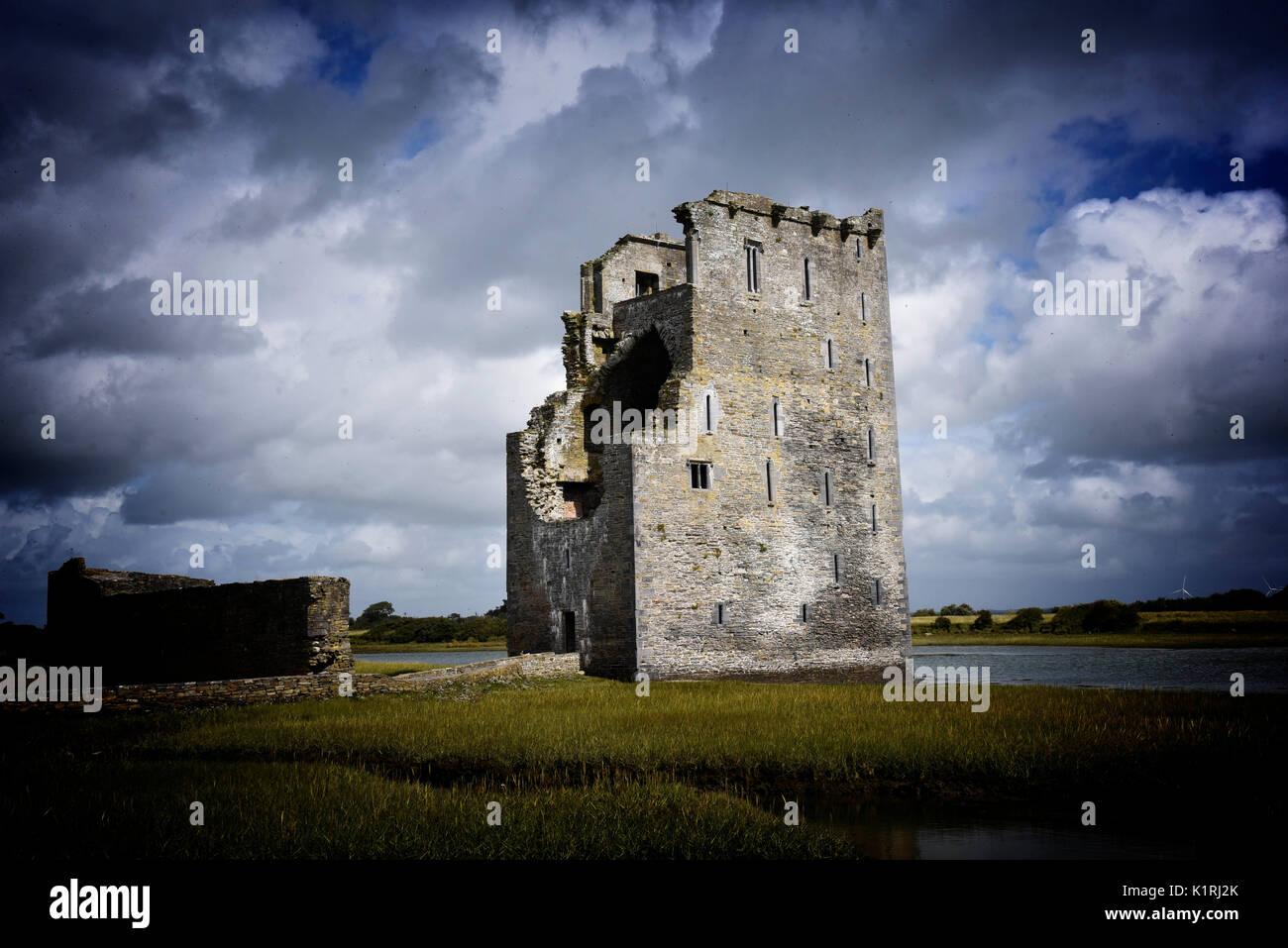 Ireland Carrigafoyle Castle Co. Kerry. Ruined Elizabethan fortress, River Shannon, Wild Atlantic Way. Stock Photo