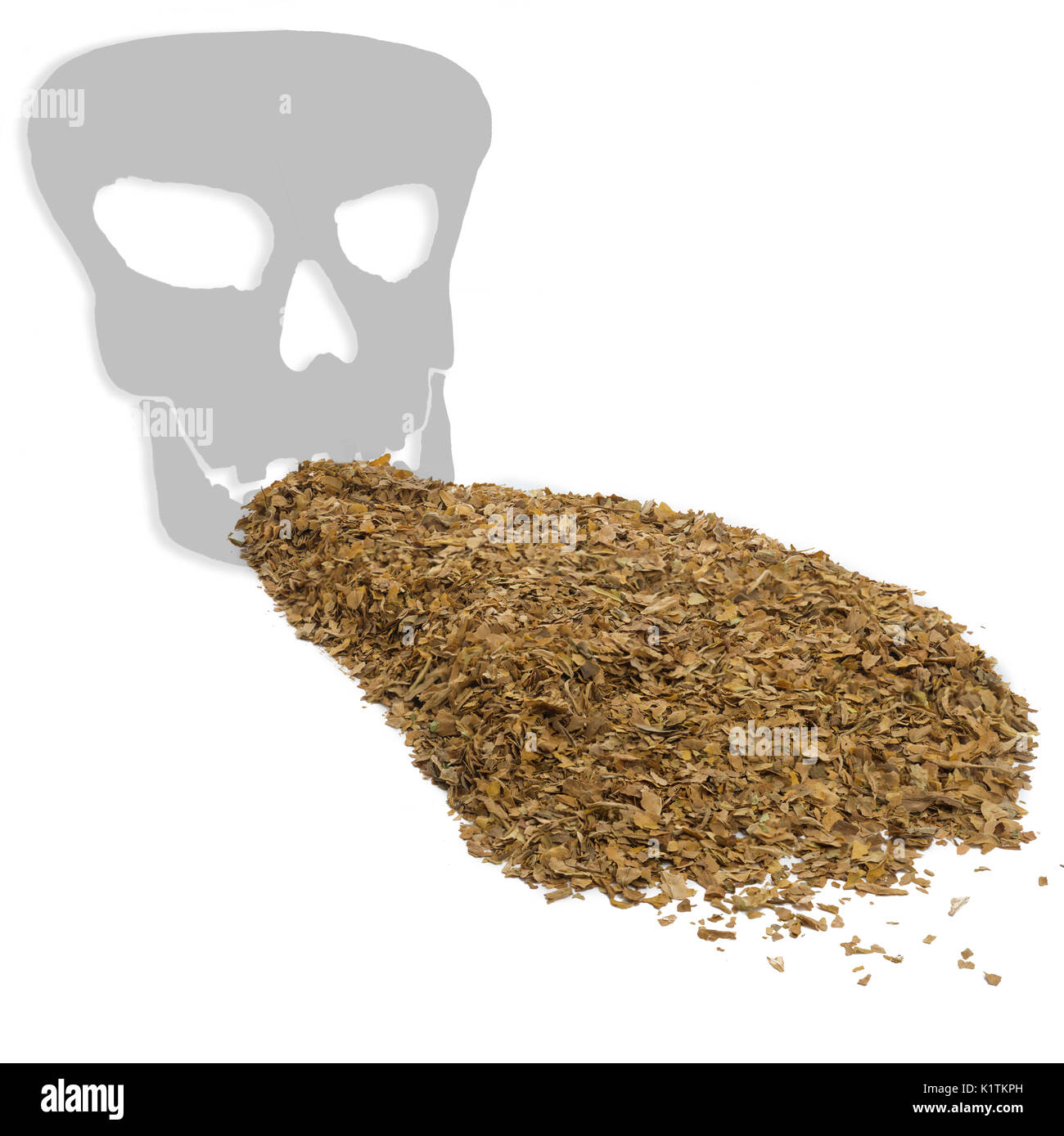 square image ,concept health warning smoking kills  showing unprocessed dry tobacco leaves with a death skull shadow on a white background - Stock Image