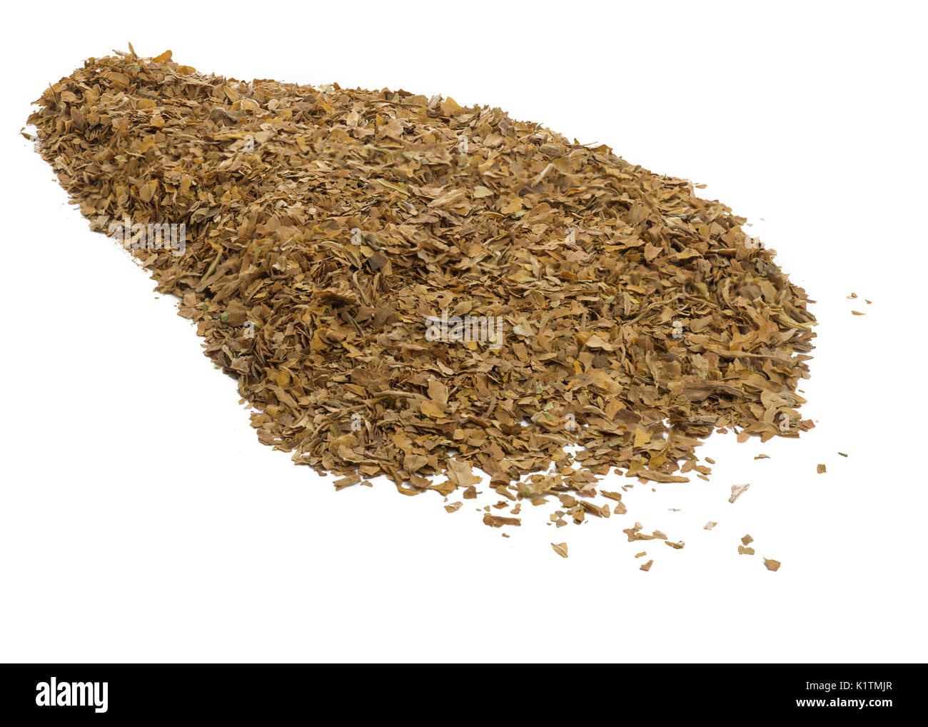 close up of unprocessed tobacco leaves on a white isolated background - Stock Image