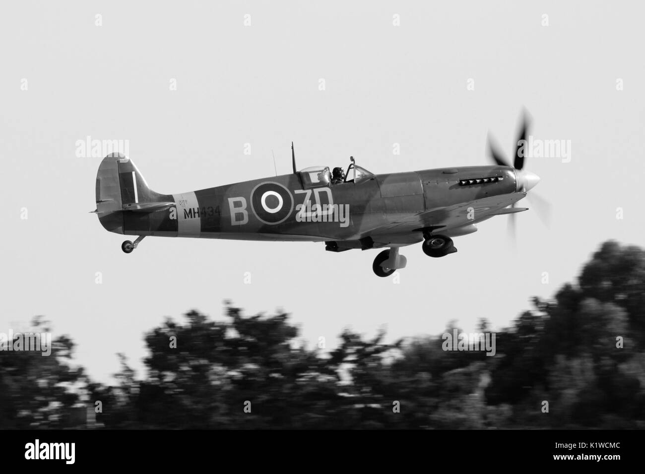 Supermarine Spitfire Mk IX classic British World War 2 fighter plane flying on takeoff for an air display. Side view photo converted to monochrome. - Stock Image