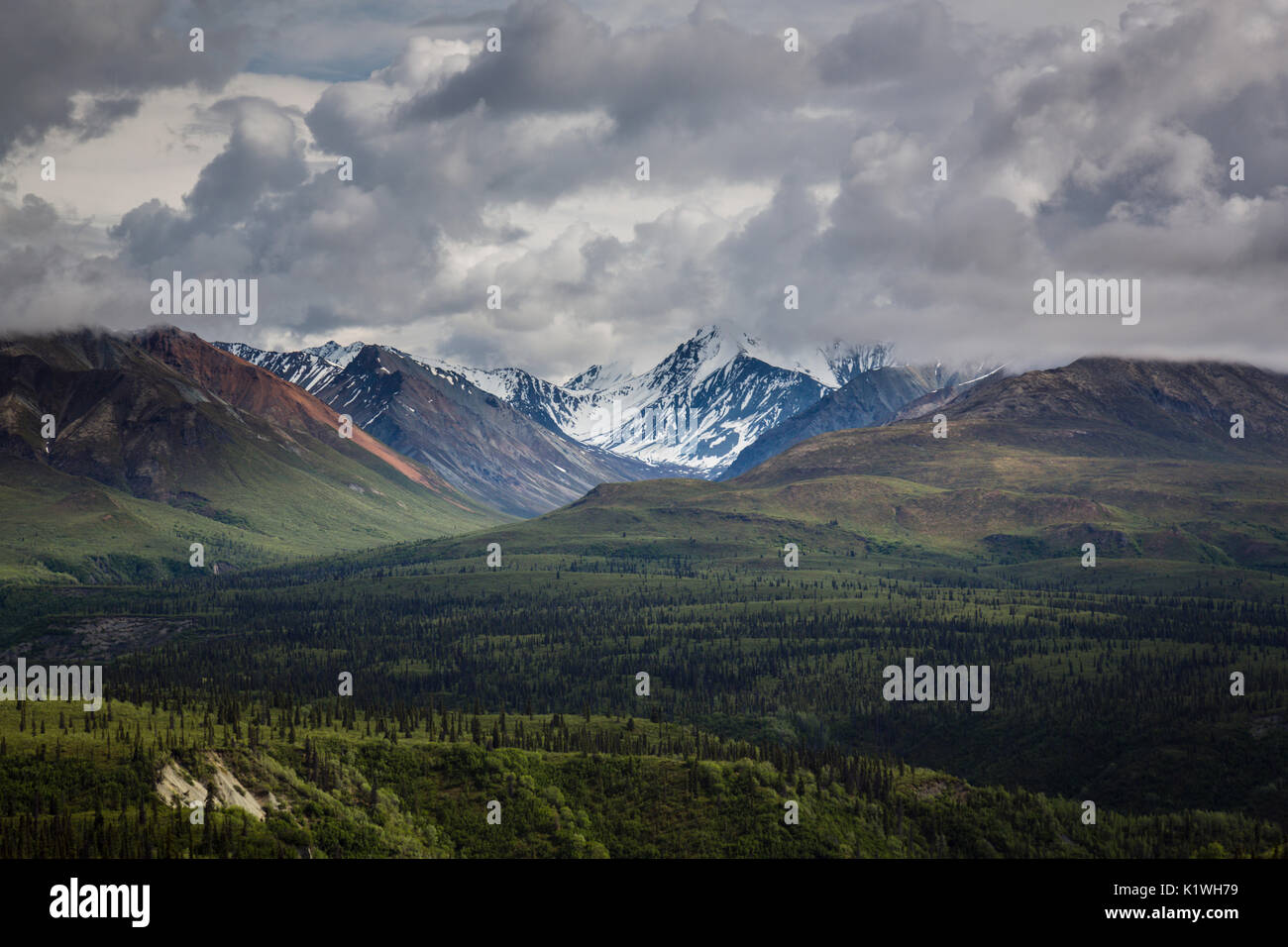 Chugach Mountains, Glenn Highway, Alaska, USA - Stock Image