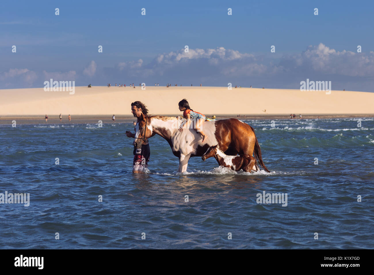 A little girl mounting a horse and its litter in the ocean while his father guide them in Jericoacoara, Ceará, Brasil - Stock Image