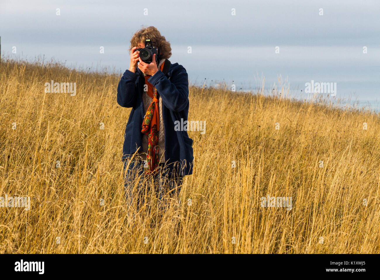 Nice looking pretty blondy caucasian happy successful girl with camera staying within the dry grass landscape shooting somebody. - Stock Image