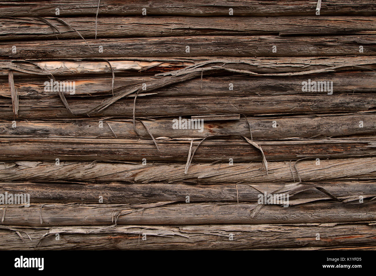 Old Log Cabin Wall High Resolution Stock Photography And Images Alamy