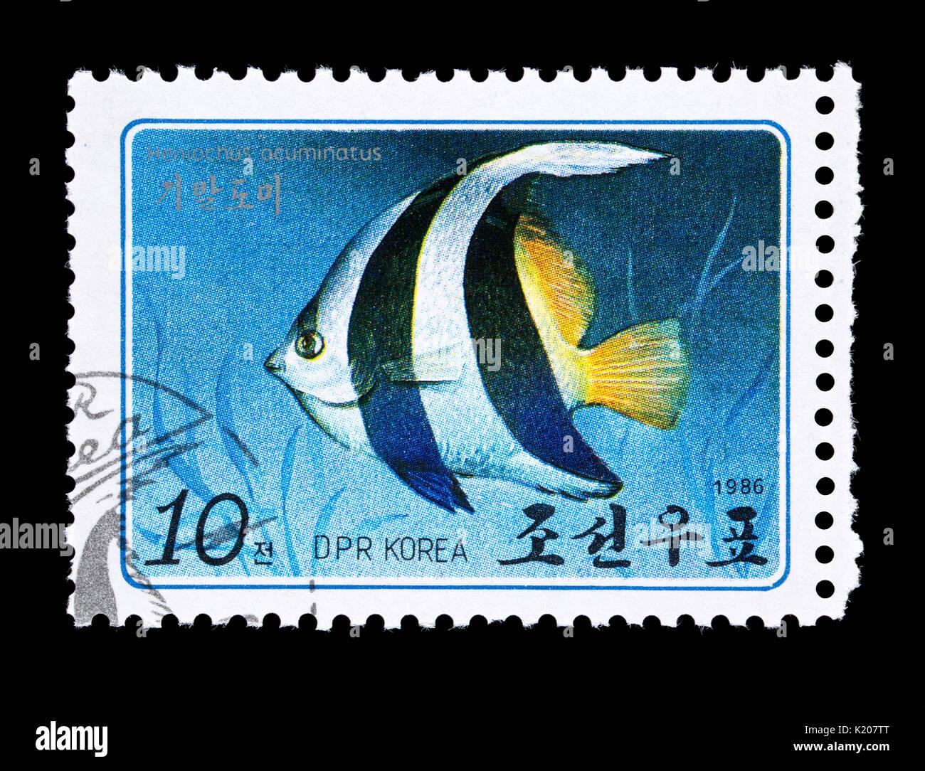 Postage stamp from Nrth Korea depicting a  pennant coralfish (Heniochus acuminatus) - Stock Image
