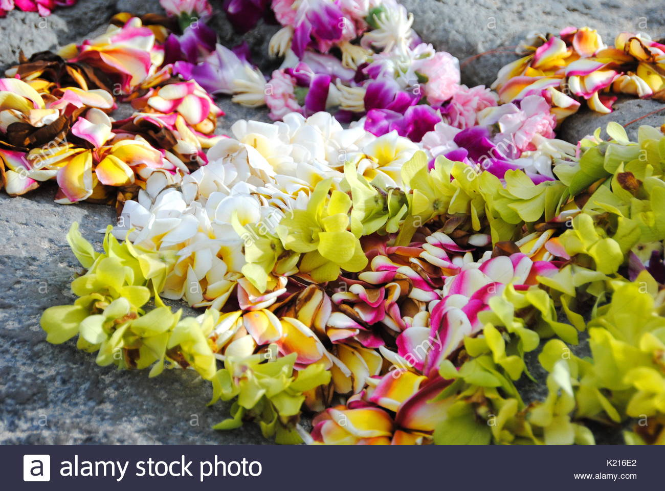 Hawaiian lei stock photos hawaiian lei stock images alamy hawaiian leis on a rock stock image izmirmasajfo