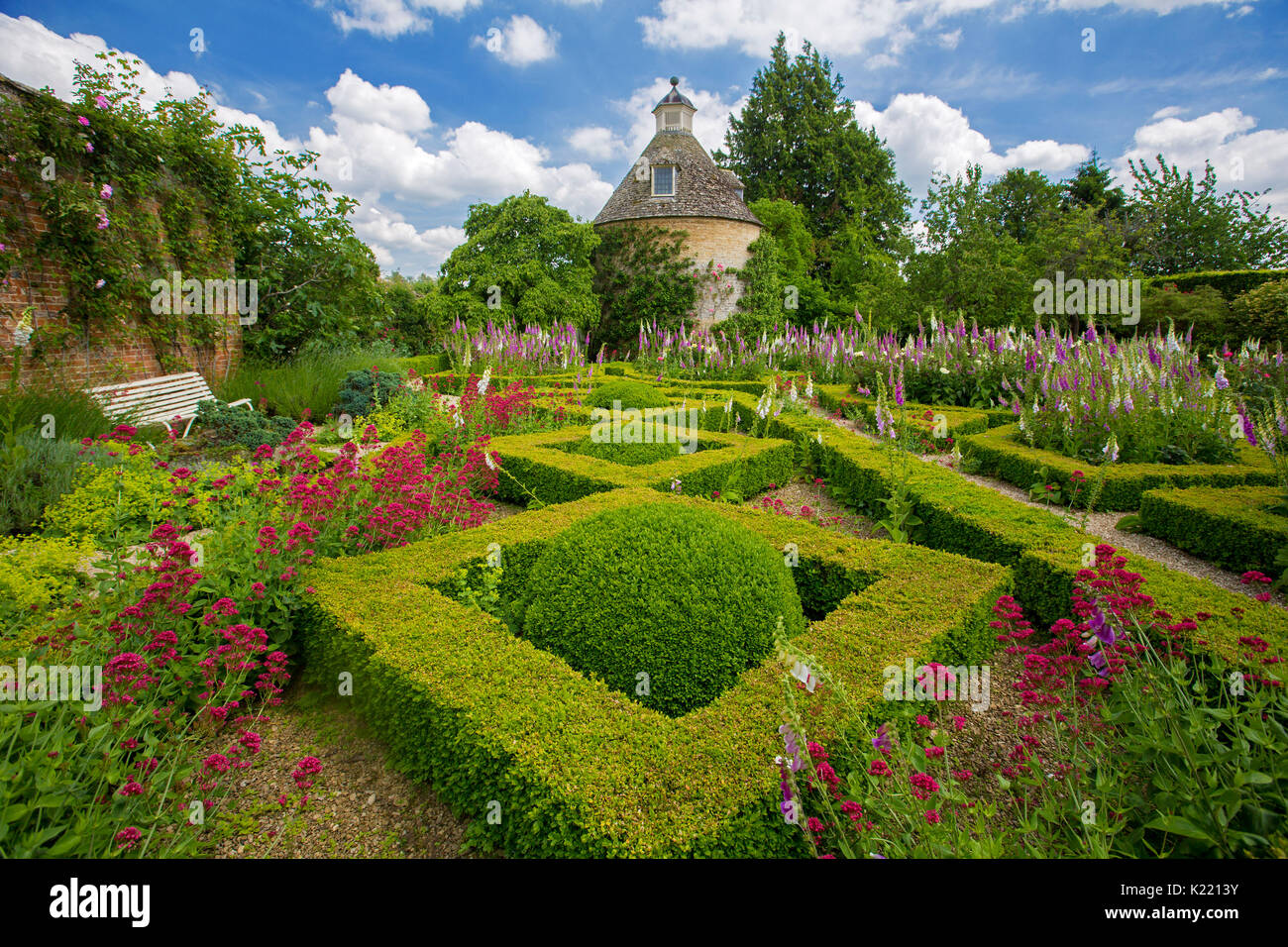 Low yew hedges, knot garden, in geometric design with masses of pink & white foxgloves &  red valerian under blue sky at Rousham gardens, England - Stock Image