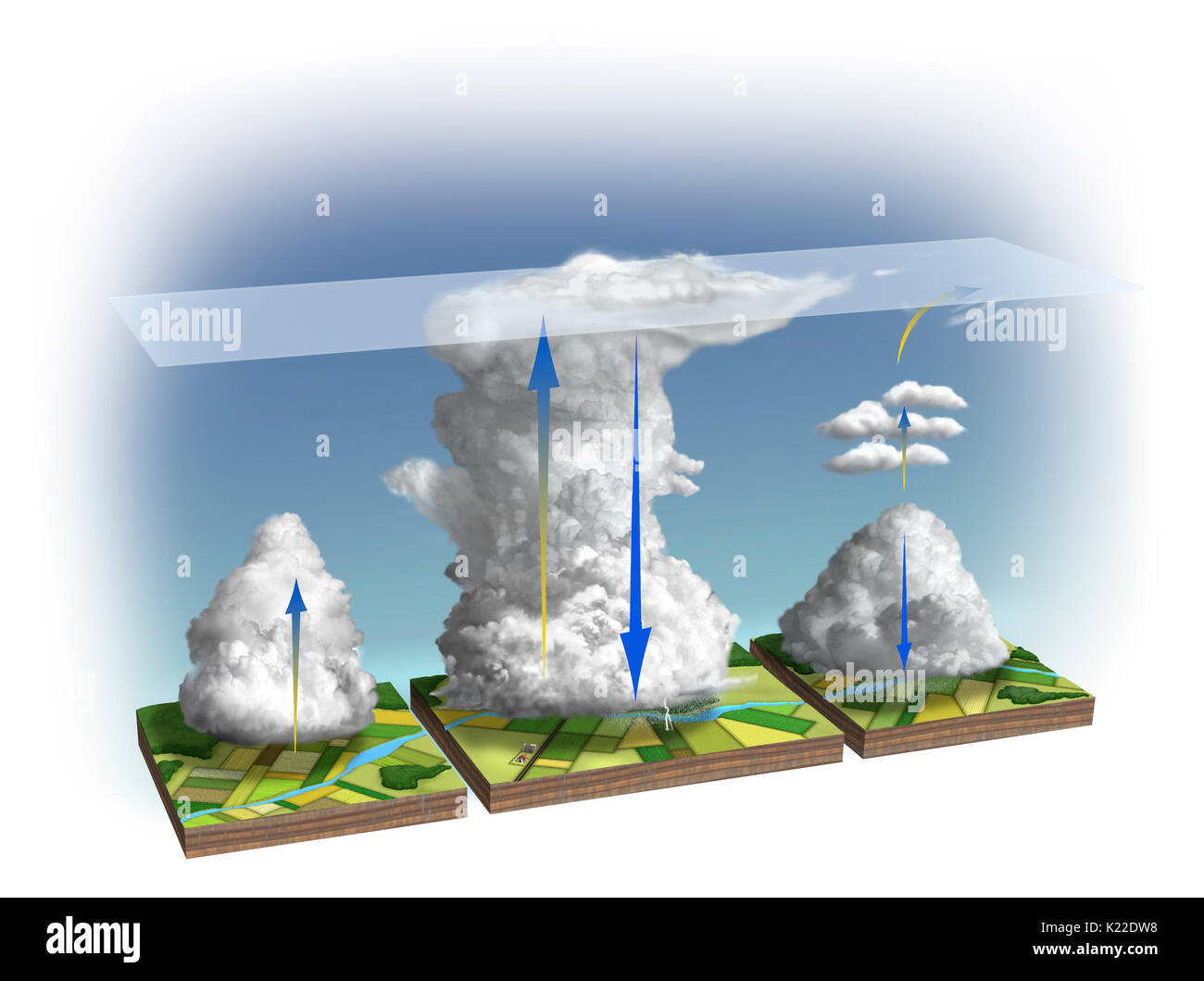 The life cycle a thunderstorm cell has three stages. In development stage,updraft a humid air mass forms a cumulus cloud. If air unstable,warm currents continue to rise,cloud grows to cumulonimbus stage. When it reaches tropopause,cloud stops developing in height becomes loaded with ice crystals that begin precipitation process. thunderstorm then enters its maturity stage: cold,heavy air from top cloud suddenly falls in form strong currents accompanied by lightning heavy showers. - Stock Image