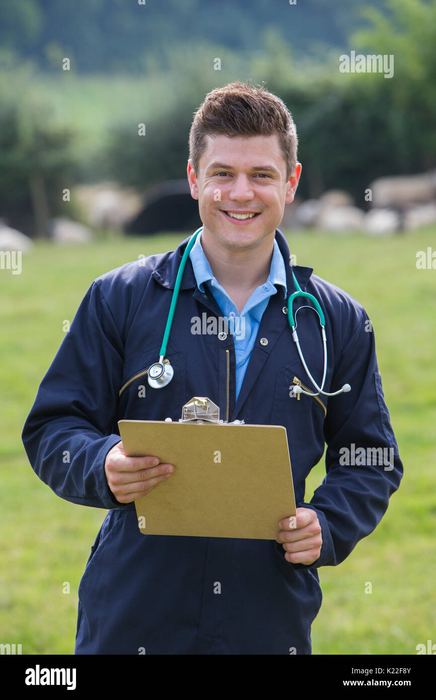 Portrait Of Vet In Field With Sheep In Background - Stock Image