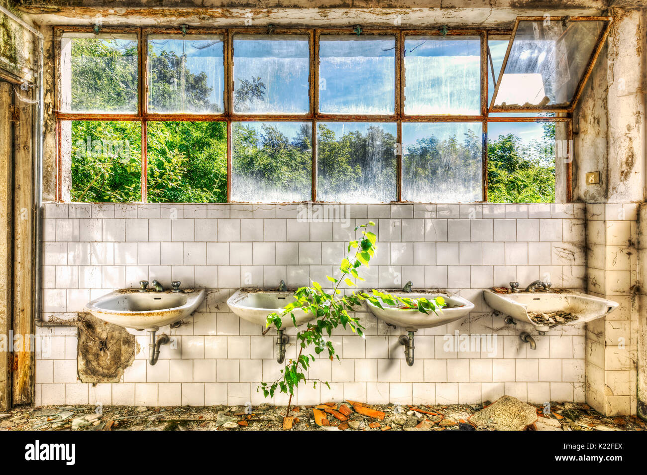 Dilapidated sinks in the washroom of an abandoned asylum - Stock Image