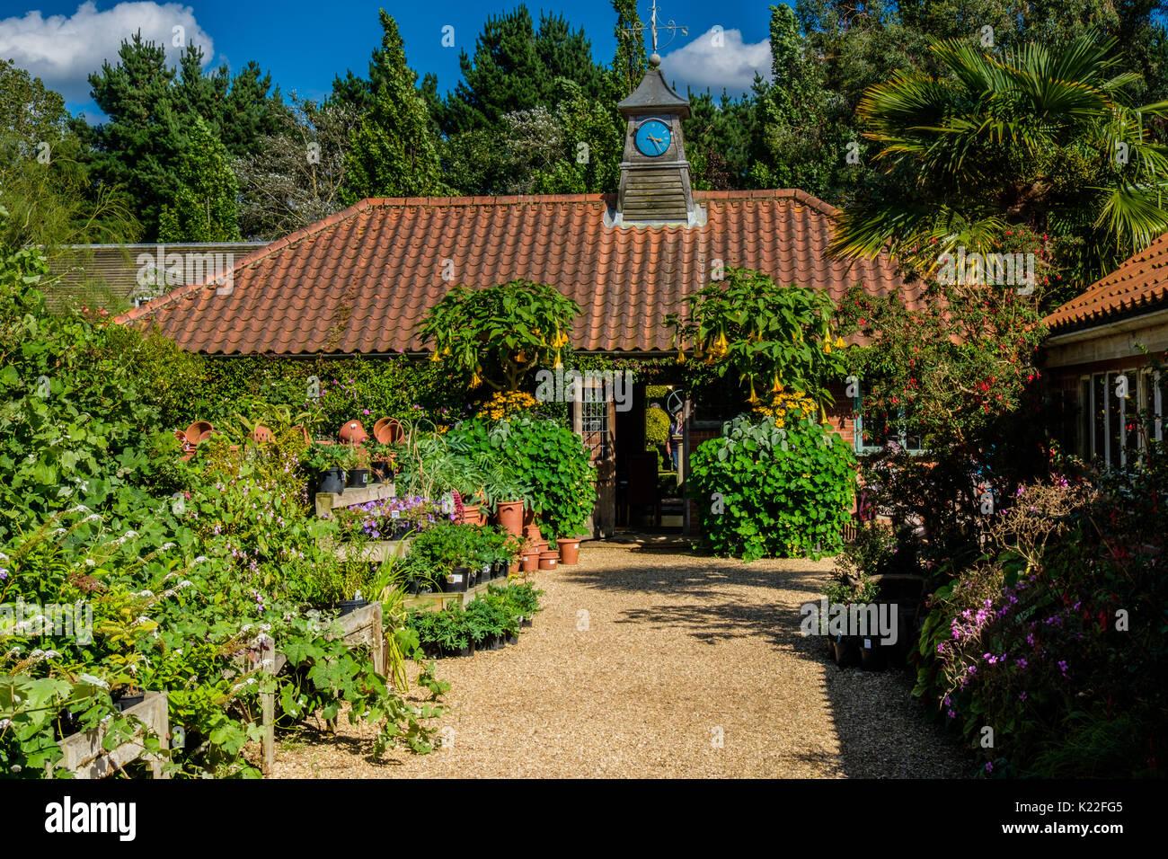 East Ruston Old Vicarage Gardens, East Ruston, Norfolk, UK - Stock Image