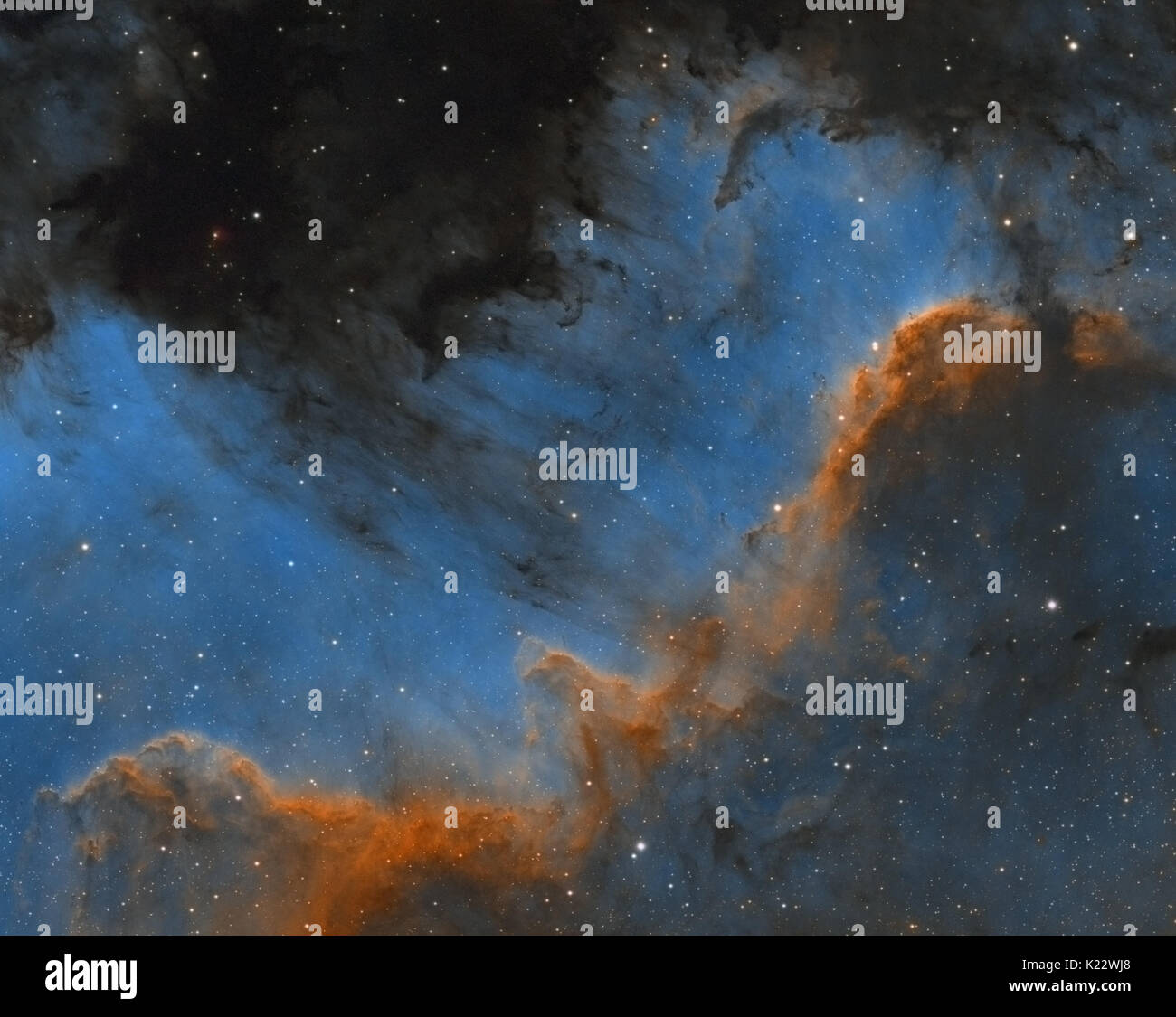 Cygnus Wall region of North America nebula in the constellation of Cygnus (The Swan) - Hubble Palette - Stock Image
