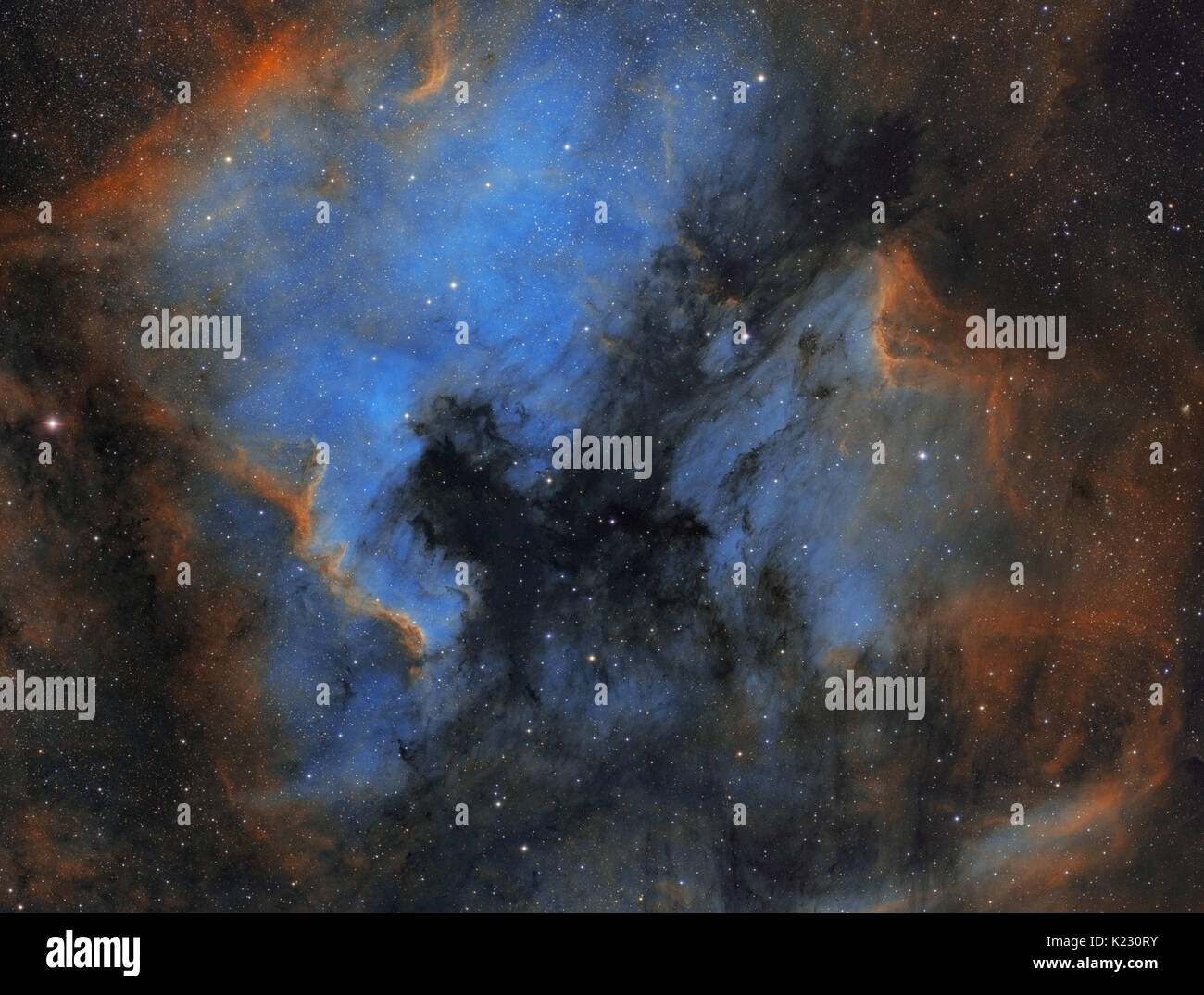 North America and Pelican nebulae in the constellation of Cygnus (The Swan) - Hubble Palette - Stock Image