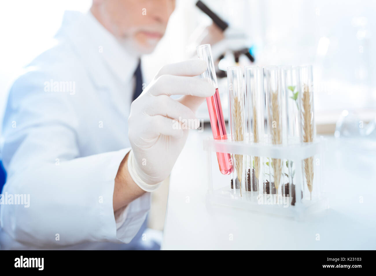 Close up of male hand that choosing one test tube - Stock Image