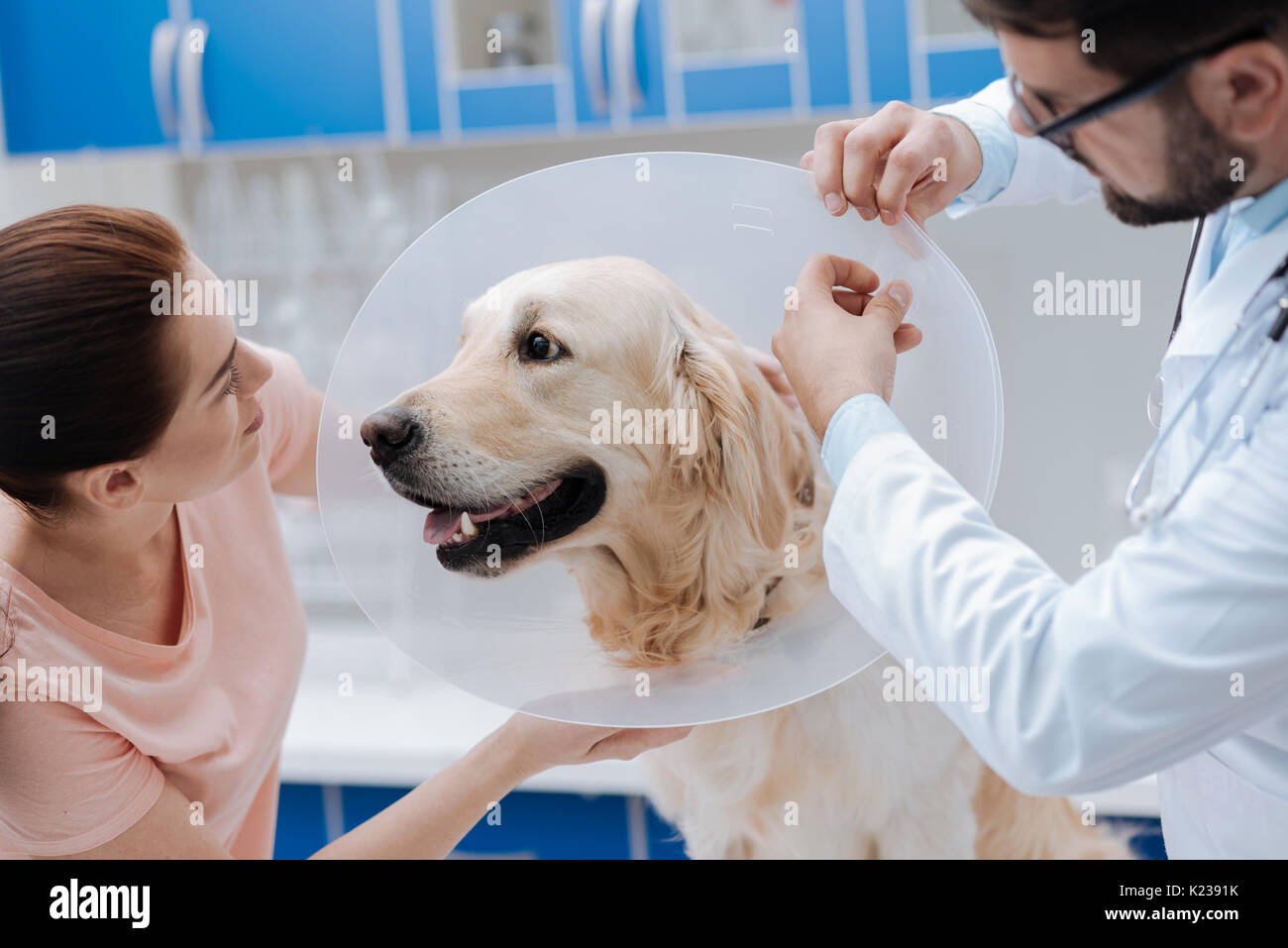Funny dog looking at his pretty owner - Stock Image