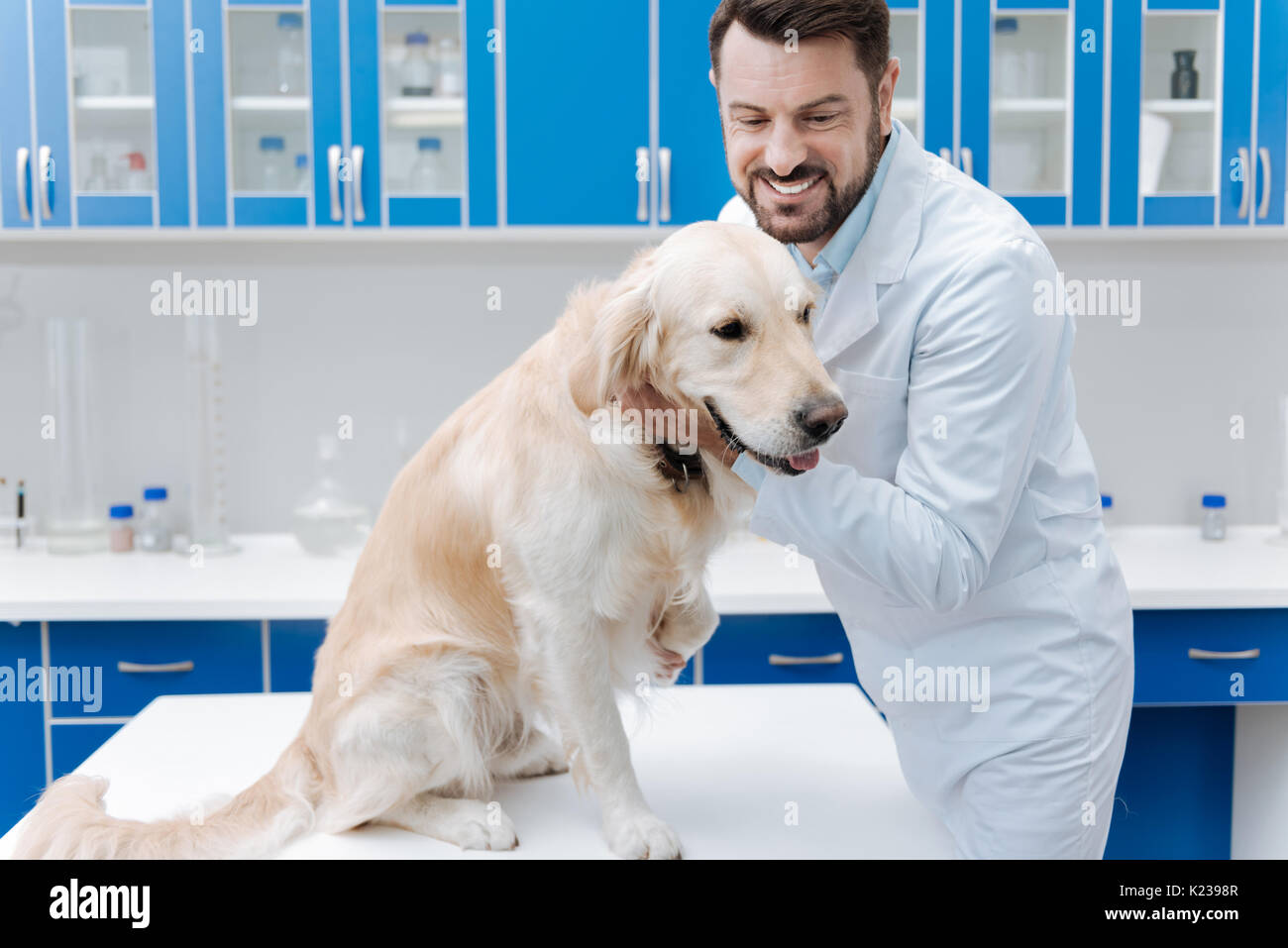 Competent doctor for animals expressing positivity - Stock Image