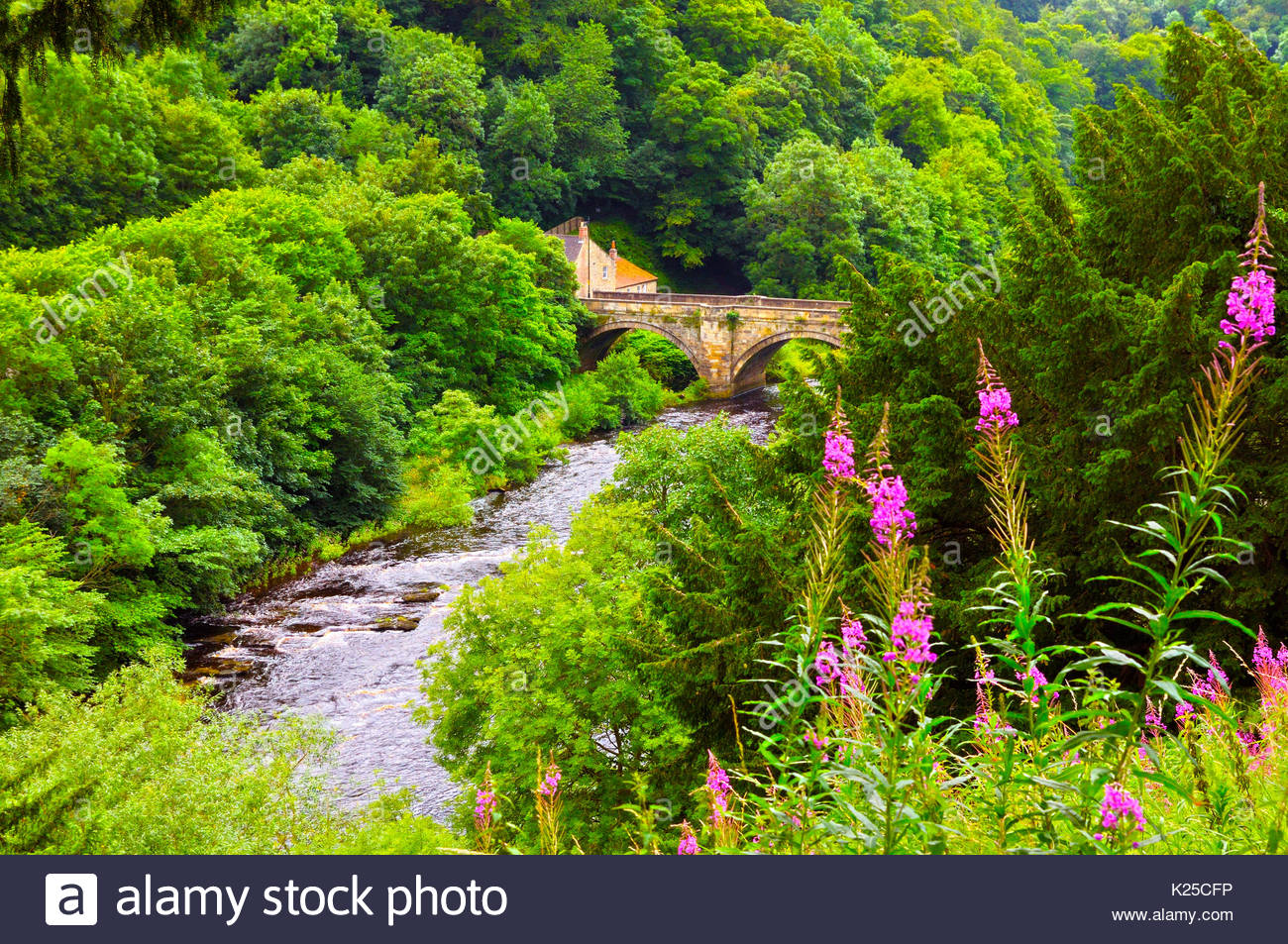 The Green Bridge and River Swale, Richmond, North Yorkshire, UK Stock Photo
