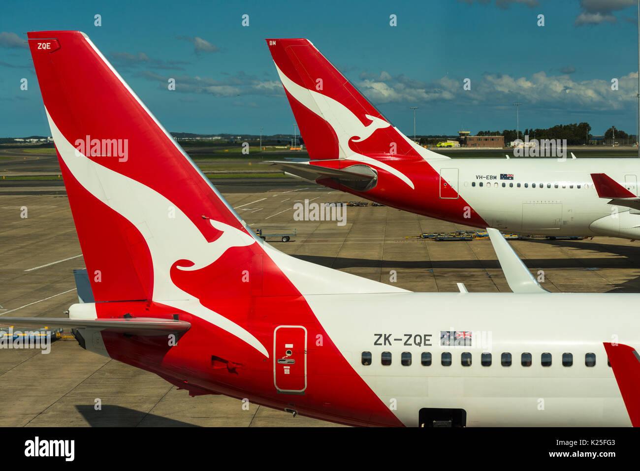 Qantas passenger aircraft tails with distinctive kangaroo logo at Sydney International Airport, New South Wales, Stock Photo