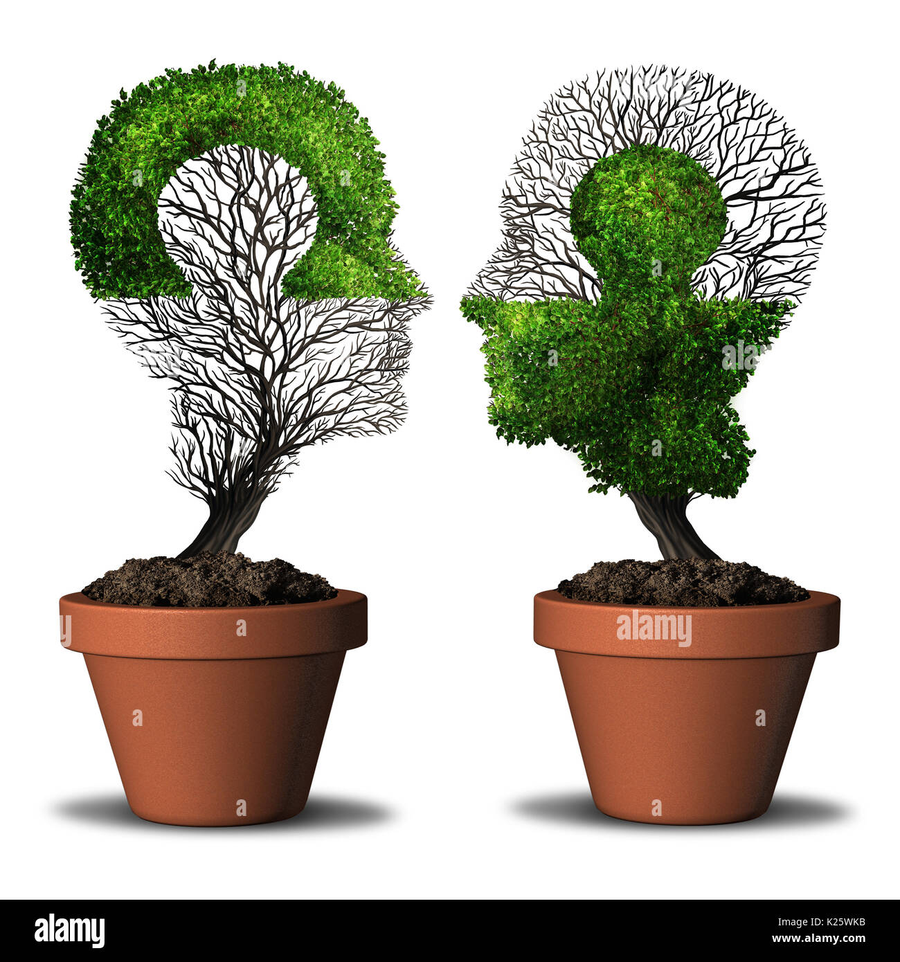 Perfect partner combination relationship and dual friendship concept as two trees shaped as a human head with a jigsaw puzzle. - Stock Image