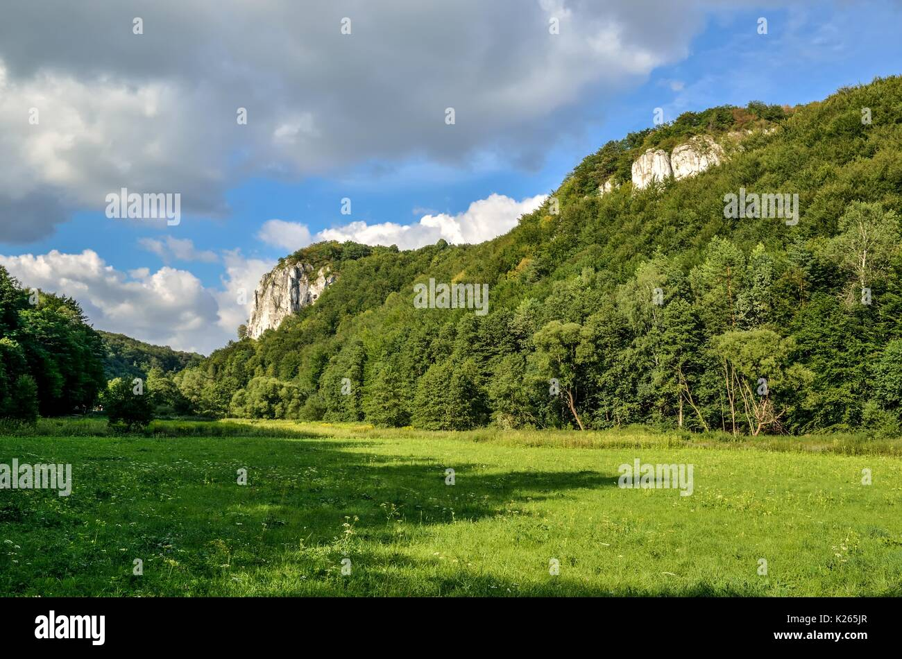 Sunny summer landscape. Beautiful green Jurassic valley in Poland. - Stock Image
