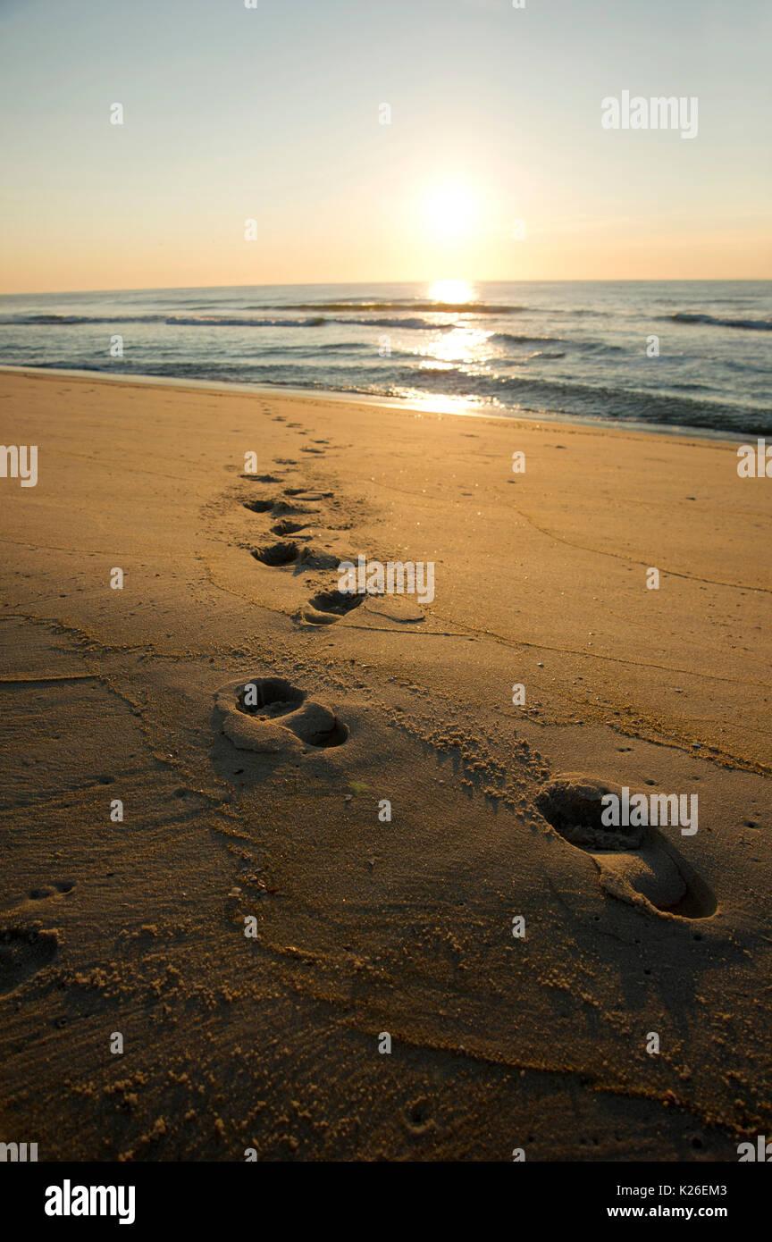 sunrise on beach - Stock Image