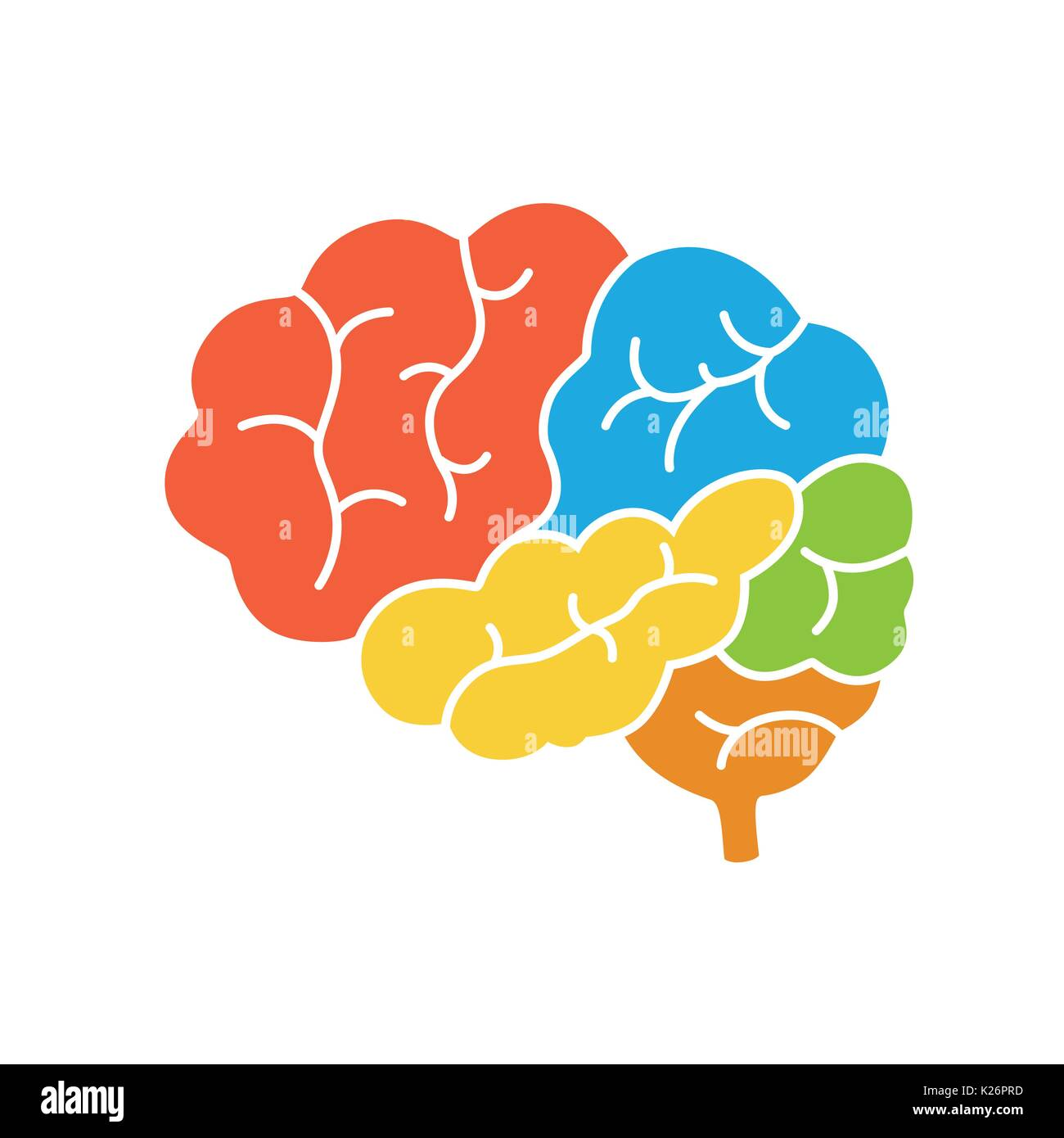 A diagram of the human brain side view anatomy vector illustration a diagram of the human brain side view anatomy vector illustration in flat design style ccuart Choice Image