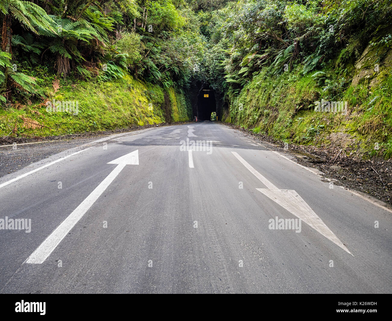 Tunnel, Forgotten World Highway, Taranaki Region, North Island, New Zealand - Stock Image