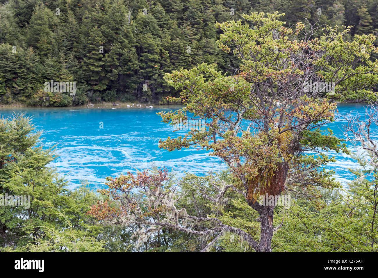 Rio Baker near Puerto Bertrand Carretera Austral 7 Patagonia Park Chile - Stock Image