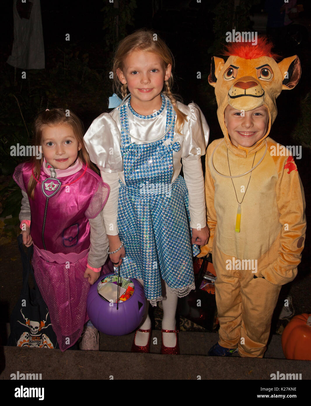 Dorothy, cowardly lion and a witch from the Wizard of OZ out for a night of Halloween trick or treating. St Paul Minnesota MN USA - Stock Image