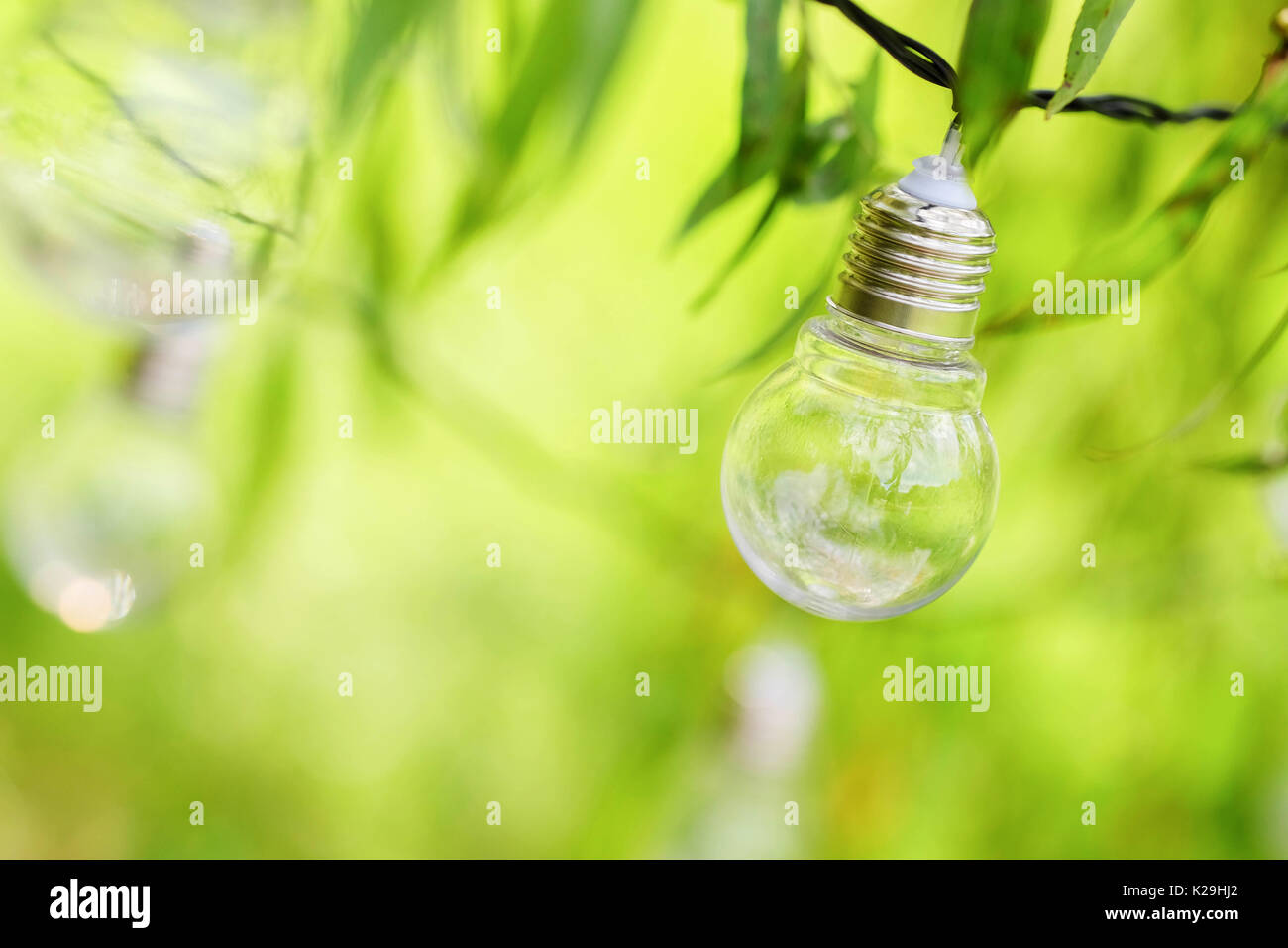 Bulbs On A Wire Stock Photos Images Alamy Wiring Up Outdoor Lights Light Image