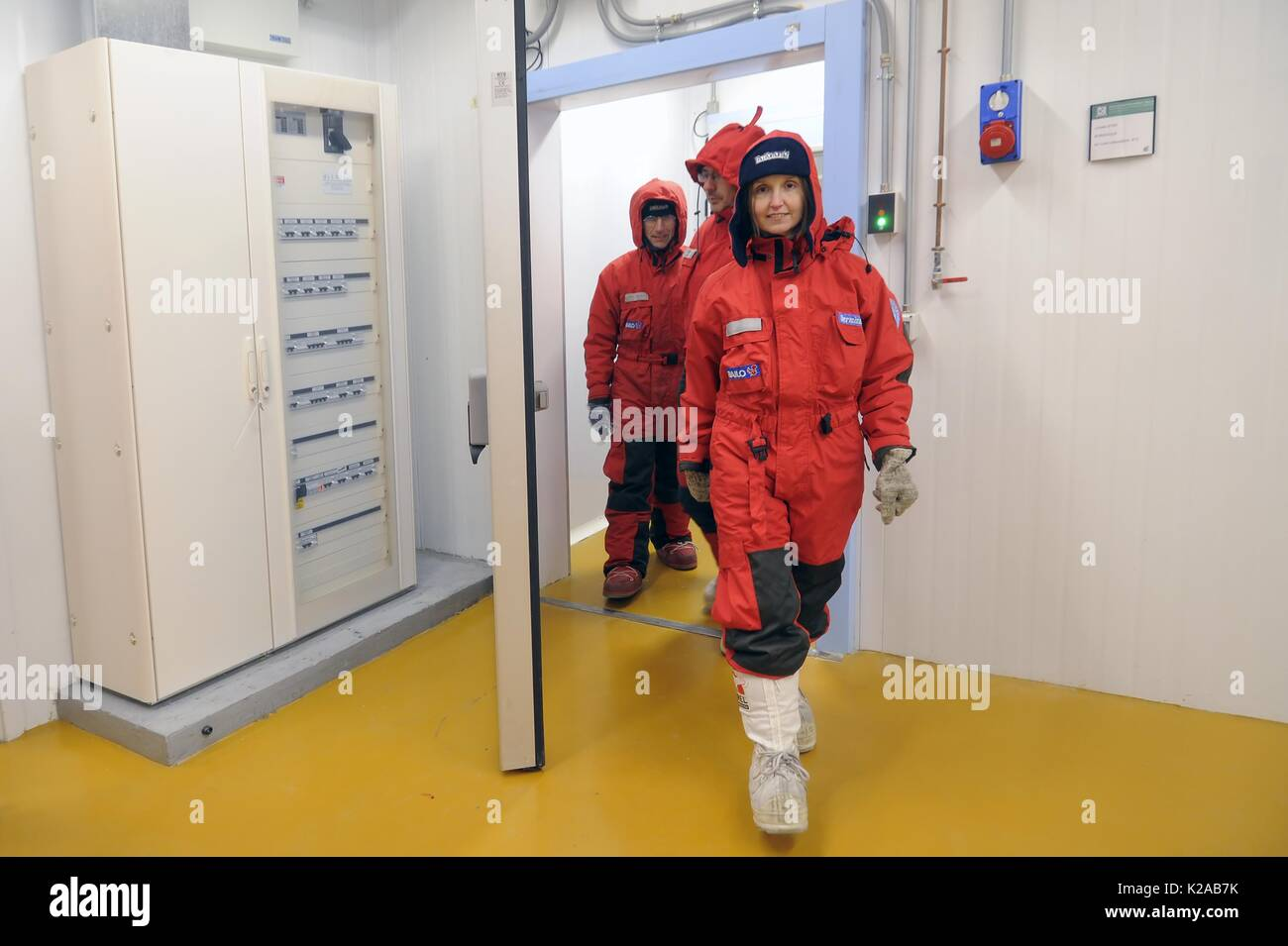 University of Milano Bicocca (Italy), EuroCold laboratory for the conservation and study of ice cores from Antarctica and glaciers, to allow studies on the global atmosphere and climate change - Stock Image