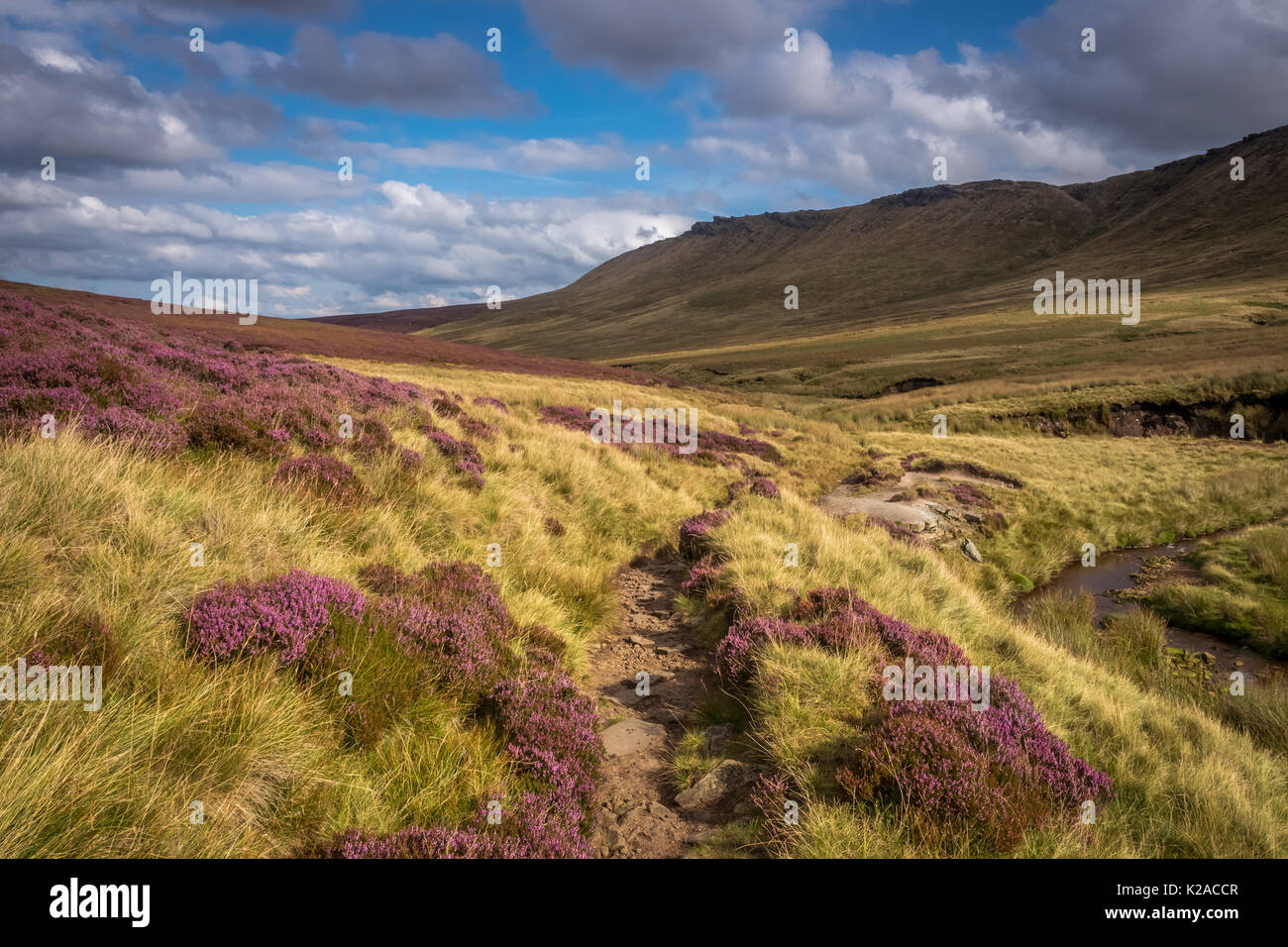 On the Pennine Way in the Dark Peak district of Derbyshire. The Pennine Way is a 250 mile long distance footpathe along the backbone of England. - Stock Image