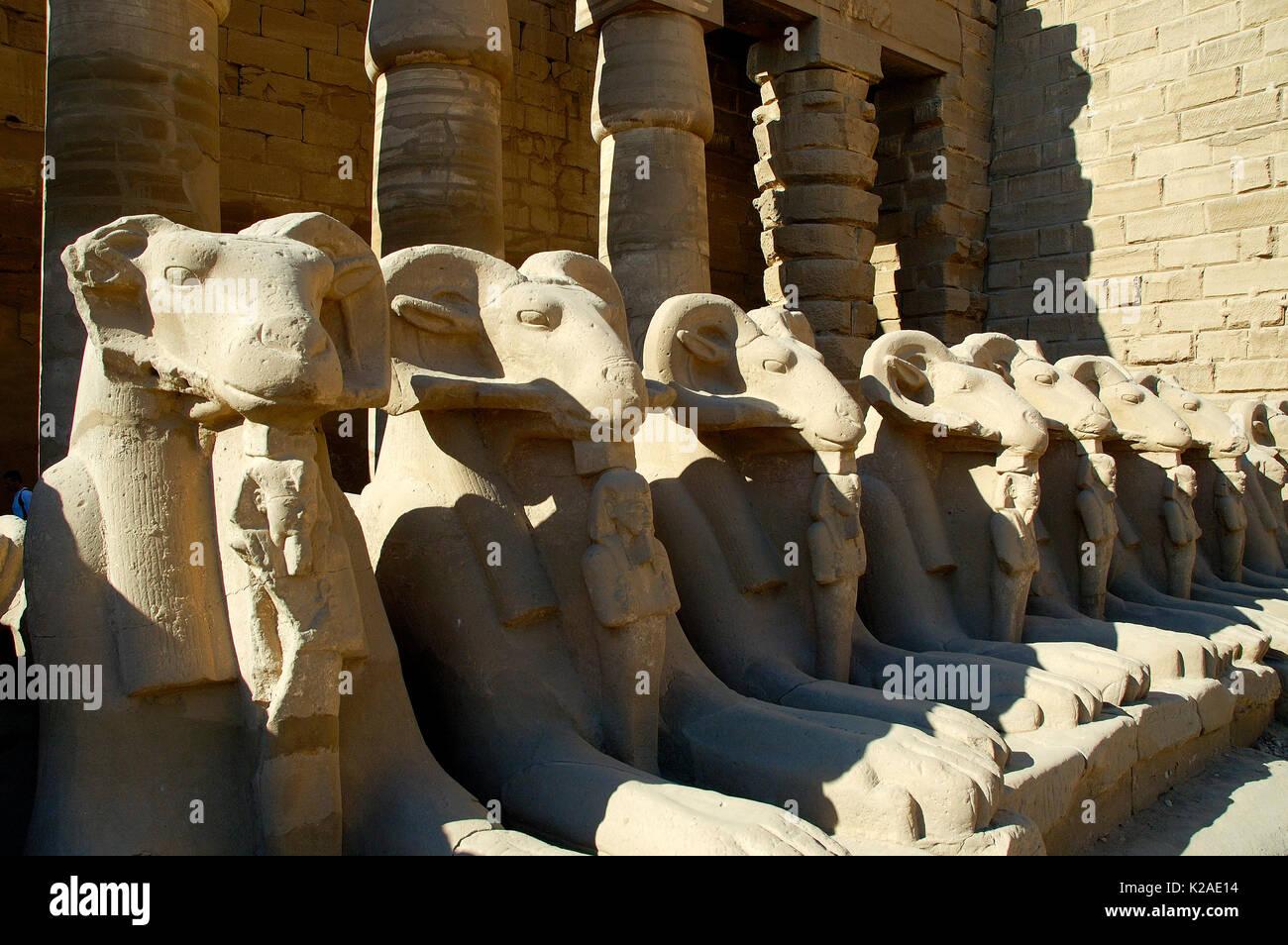 Khnum from the Temple of Karnak, Luxor. Egypt - Stock Image