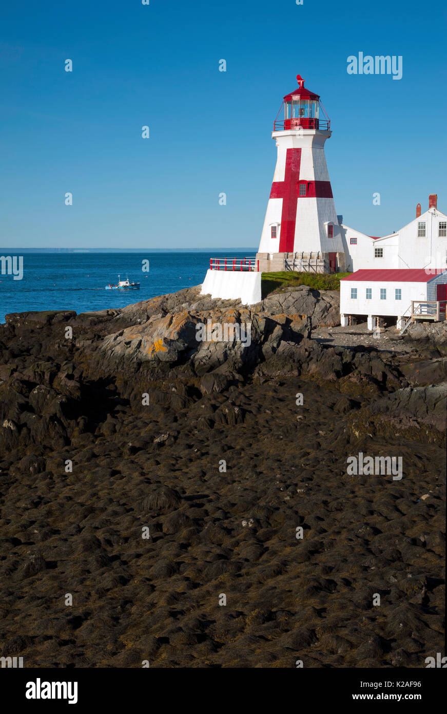 Head Harbor light, also referred to as East Quoddy Head lighthouse, guides boat around Campobello Island during low tide along the Canadian     coast. - Stock Image
