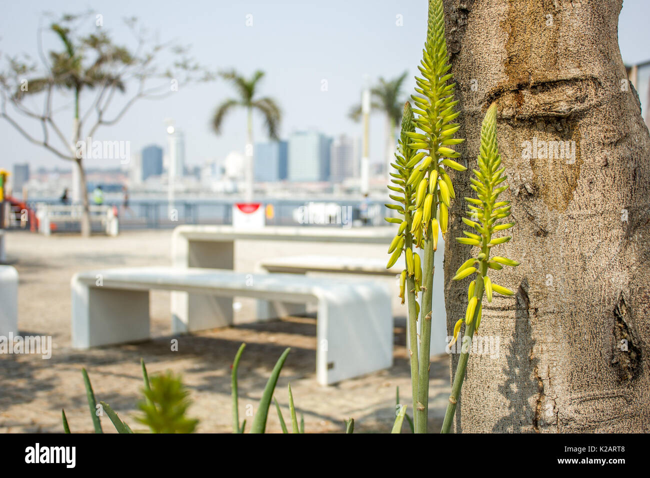Other View of Luanda City Stock Photo