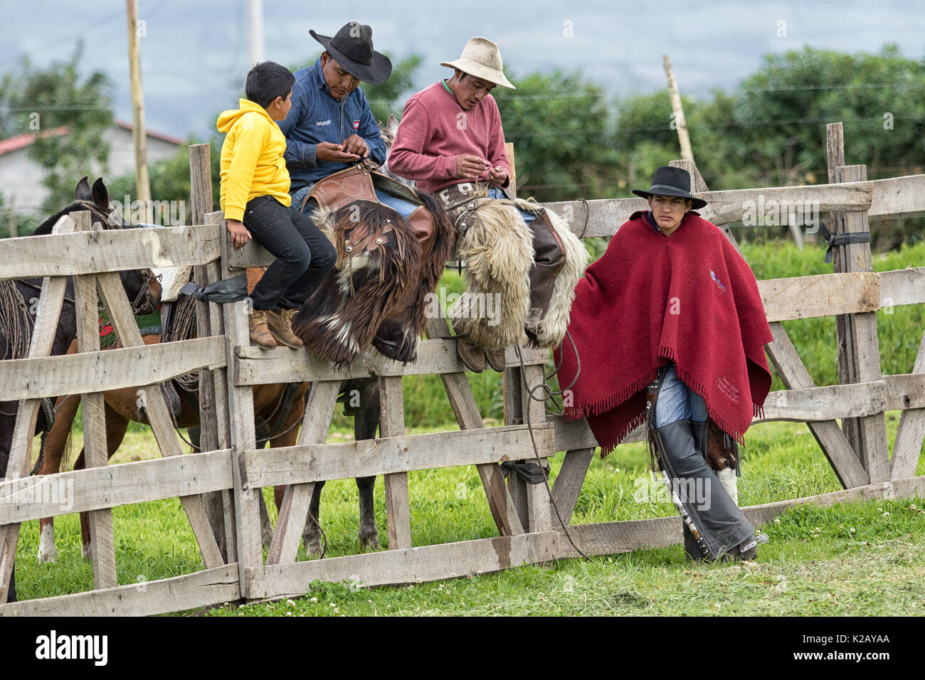 June 3, 2017 Machachi, Ecuador: cowboys from the Andes sitting on the fence in the morning in the high altitude town - Stock Image
