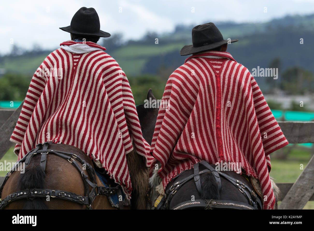 June 3, 2017 Machachi, Ecuador: cowboys from the Andes called 'chagra' on hoseback wearing striped ponchos - Stock Image