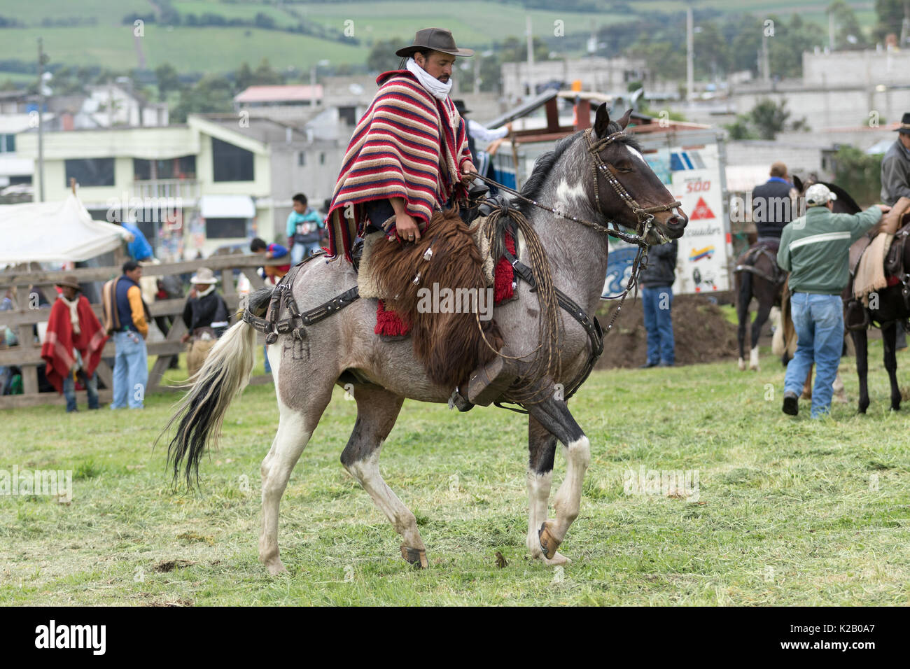 June 3, 2017 Machachi, Ecuador: cowboy wearing furry chaps and  traditional striped poncho on horseback - Stock Image