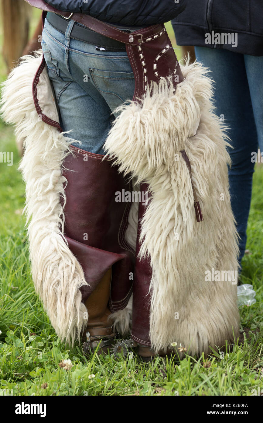 June 3, 2017 Machachi, Ecuador: chaps worn by Andean cowboys are made of alpaca or sheep skin - Stock Image
