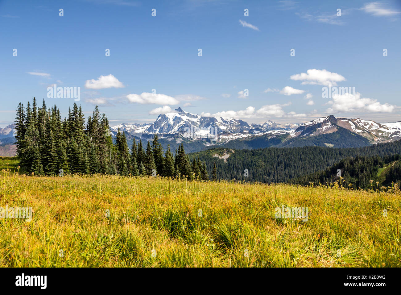 View of Mt Baker in the North Cascades of Washington State - just south of Vancouver, BC - seen from the Skyline Divide hiking trail. - Stock Image