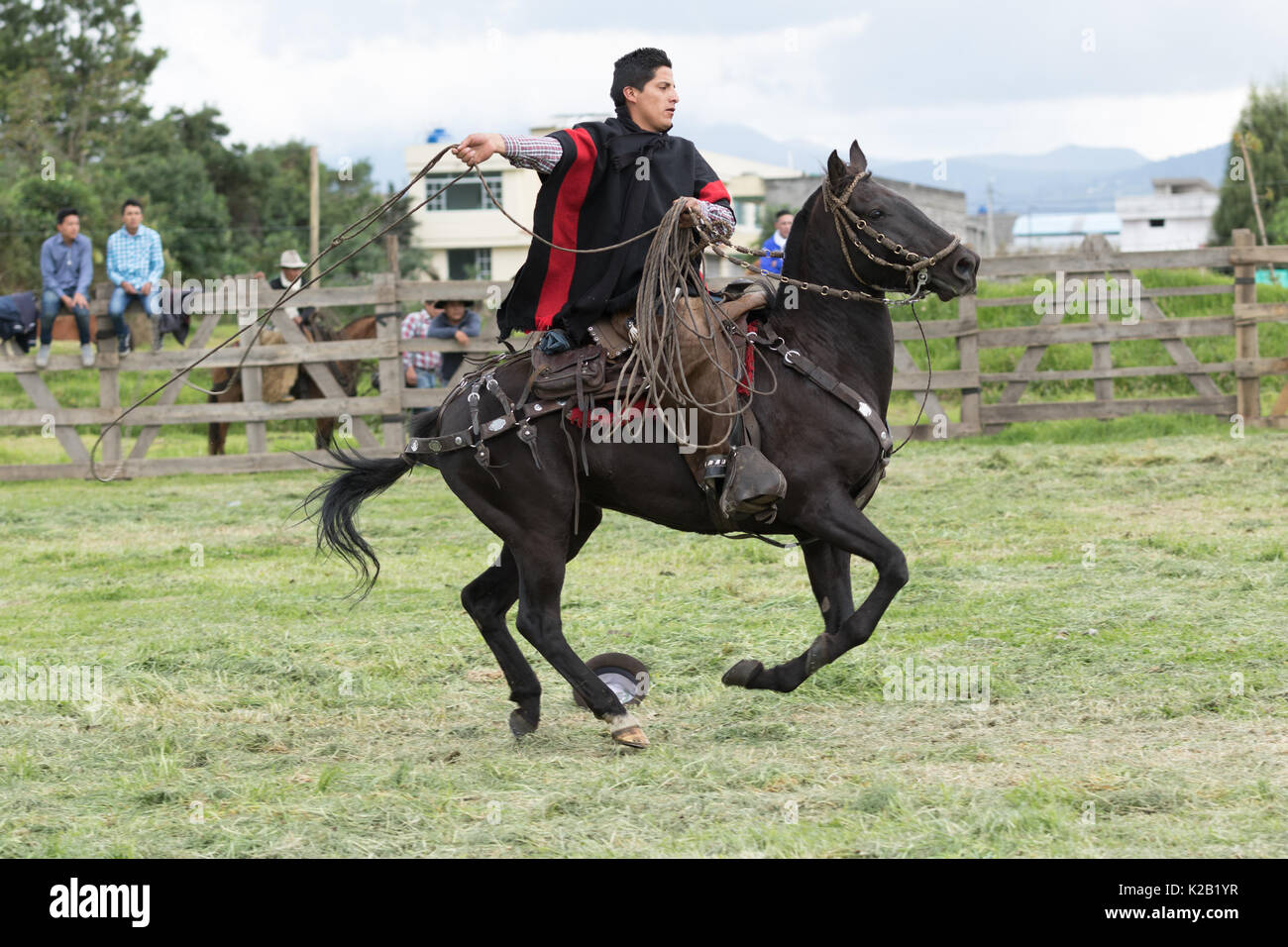 June 3, 2017 Machachi, Ecuador: cowboy called 'chagra' in the ANdes riding a horse while holding up a lasso - Stock Image