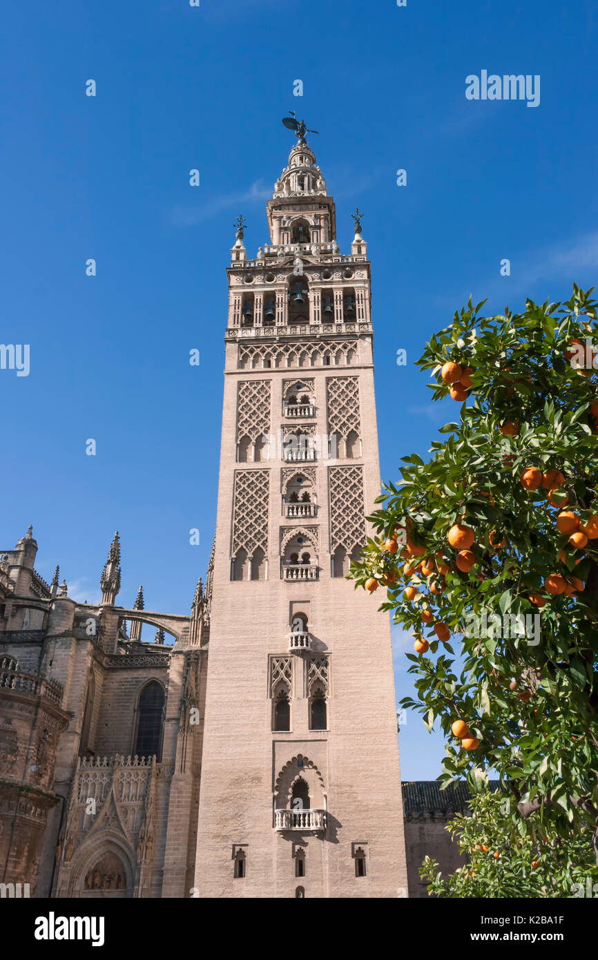 Seville, Spain.  The Giralda Tower. This bell tower of the Seville Cathedral is a UNESCO World Heritage Site. - Stock Image
