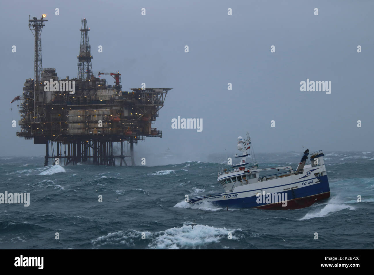 Fishing vessel 'Ocean Harvest' in close proximity to Forties Delta Platform, North Sea, January 2016. - Stock Image