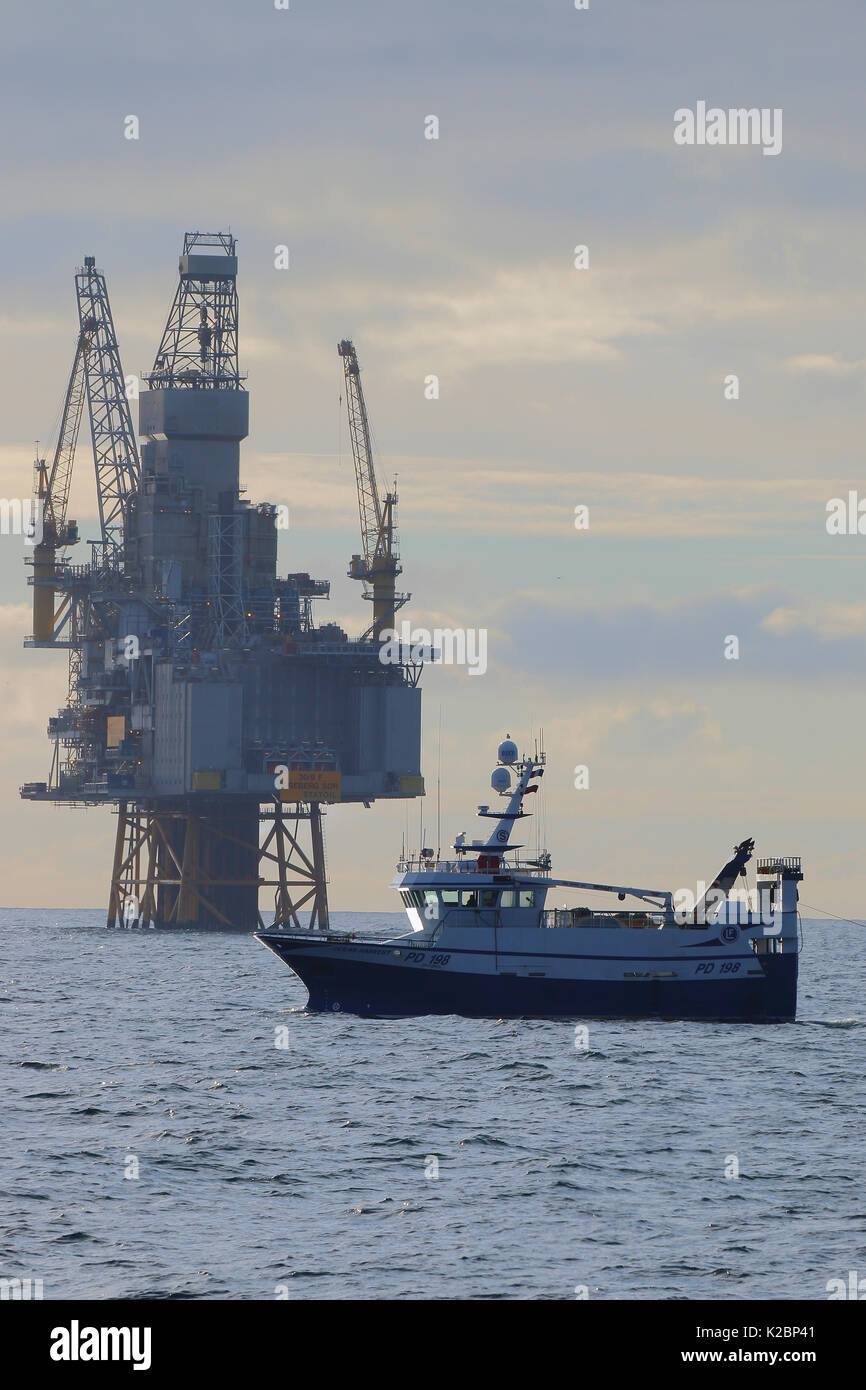 Fishing vessel 'Ocean Harvest' trawling in close proximity to Oseberg Sor Platform, North Sea , May 2015. - Stock Image