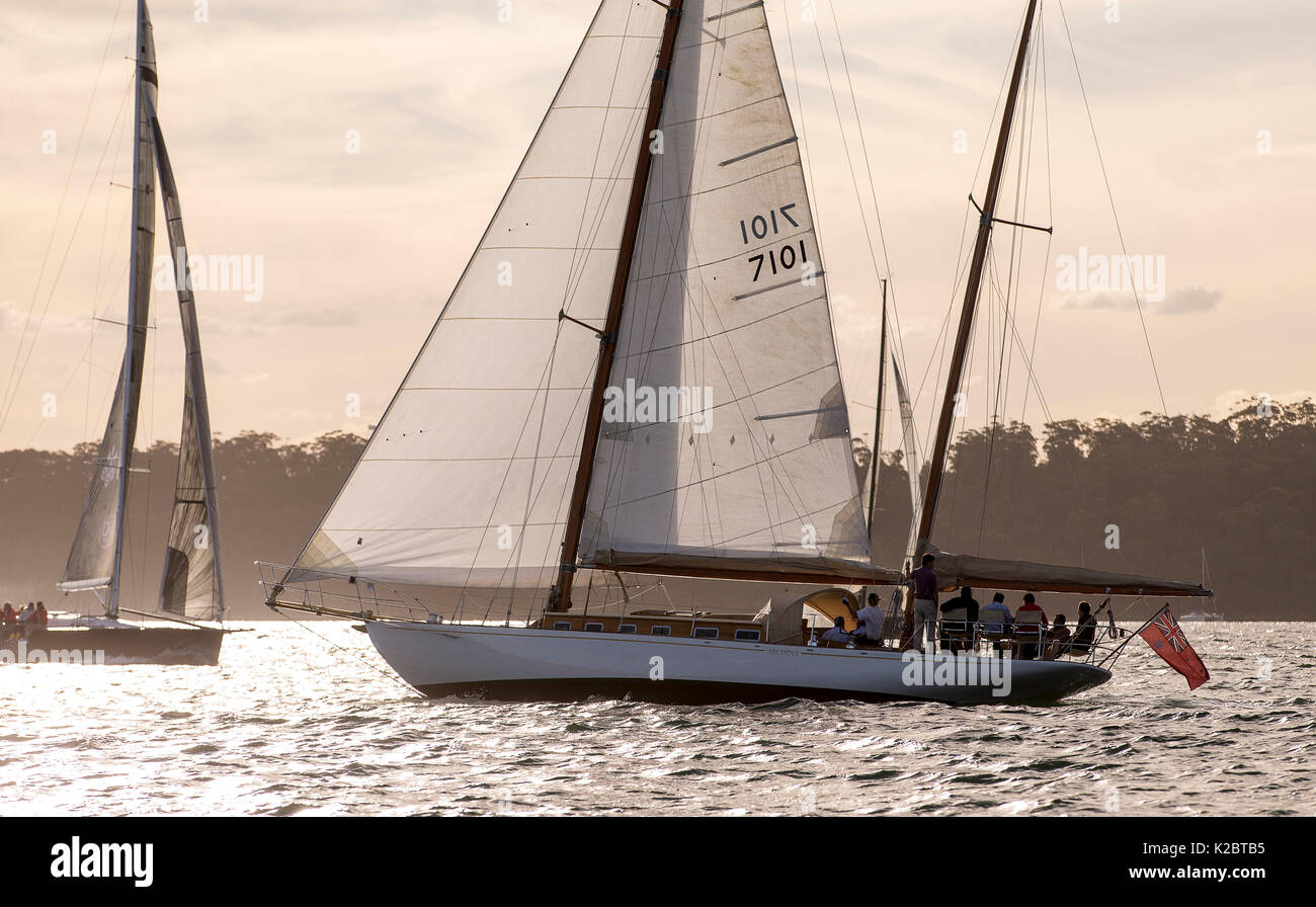 Yacht sailing in Sydney Harbour at dusk, New South Wales, Australia, November 2012. All non-editorial uses must be cleared individually. - Stock Image
